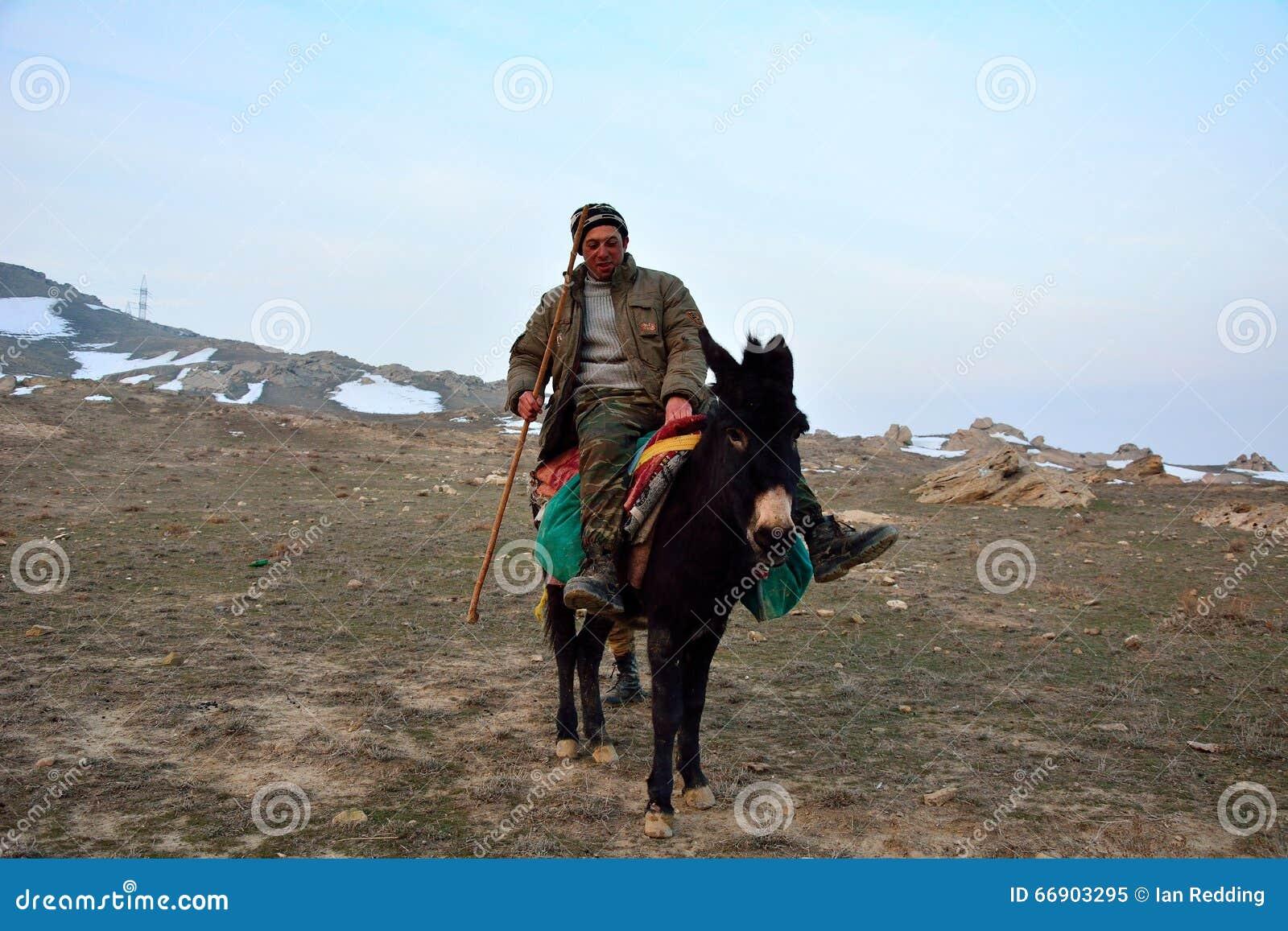 Του Αζερμπαϊτζάν ποιμένας στο μουλάρι