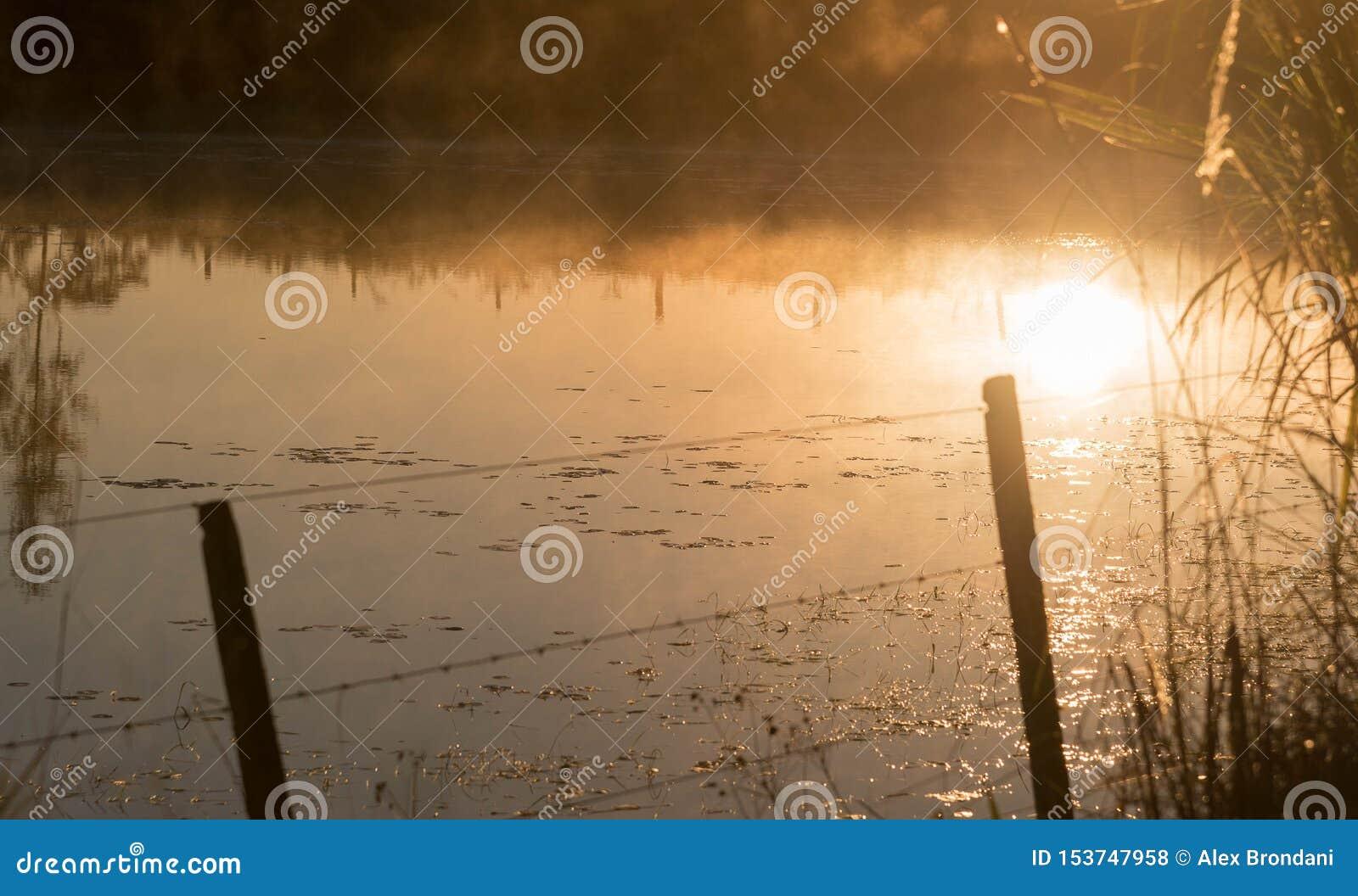 Του γλυκού νερού λίμνη στην αυγή 03