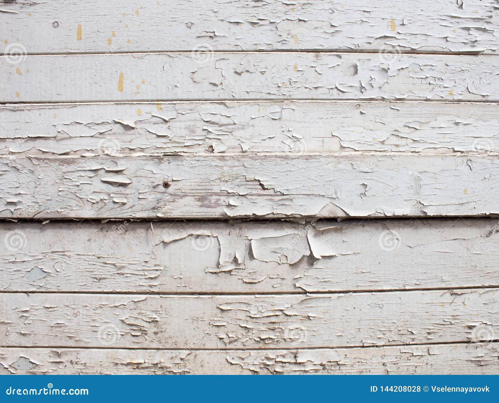 Το άσπρο ξύλινο υπόβαθρο με το παλαιό χρώμα, ραγίζει, γρατζουνίζει Διάστημα στο πλαίσιο του κειμένου Το παλαιό κολόβωμα ασπρίζει