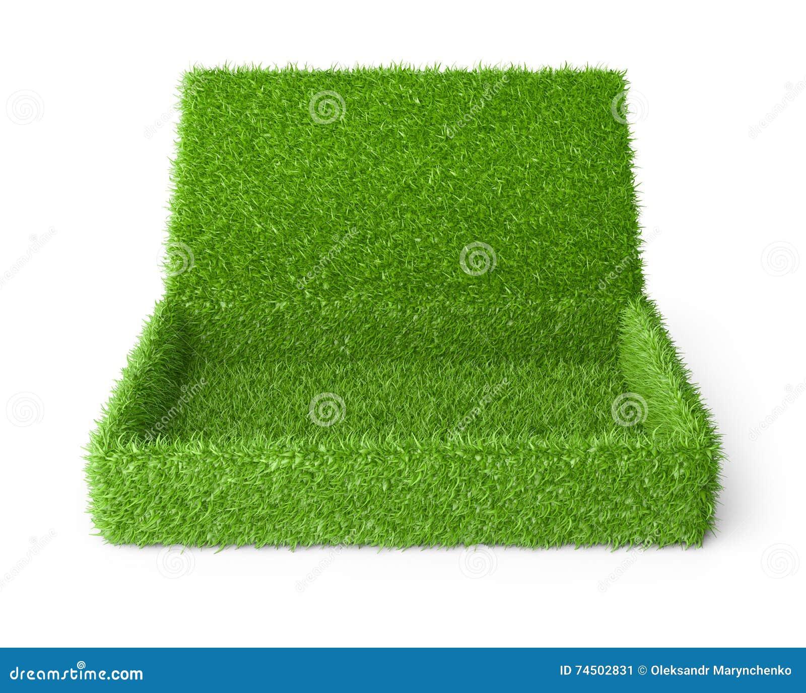 Το ανοικτό κιβώτιο κάλυψε μια πράσινη χλόη