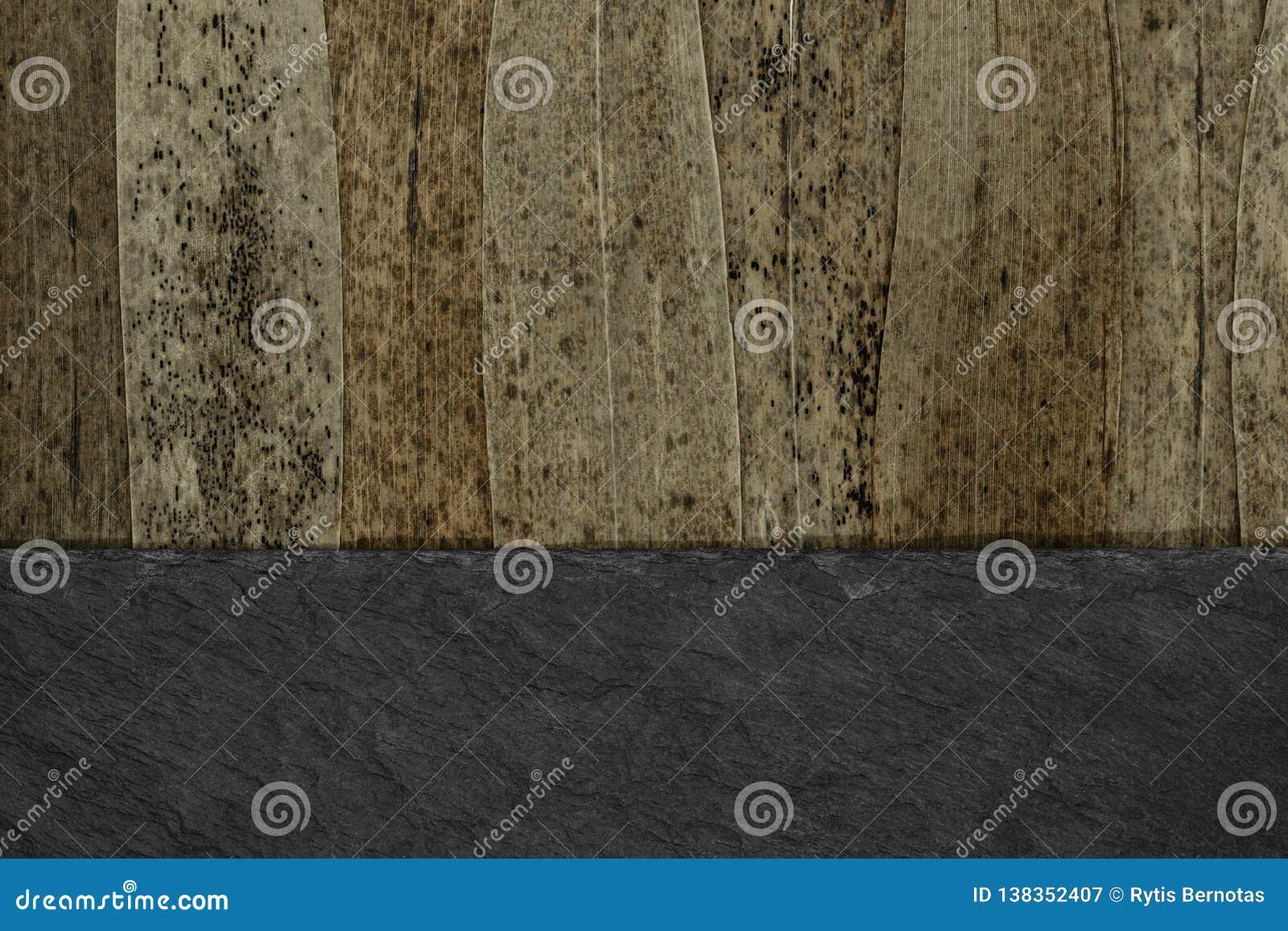Το αφηρημένο υπόβαθρο χώρισε στο μισό των καφετιών ξηρών φύλλων καλάμων με τα μαύρα σημεία και το μαύρο υπόβαθρο πετρών