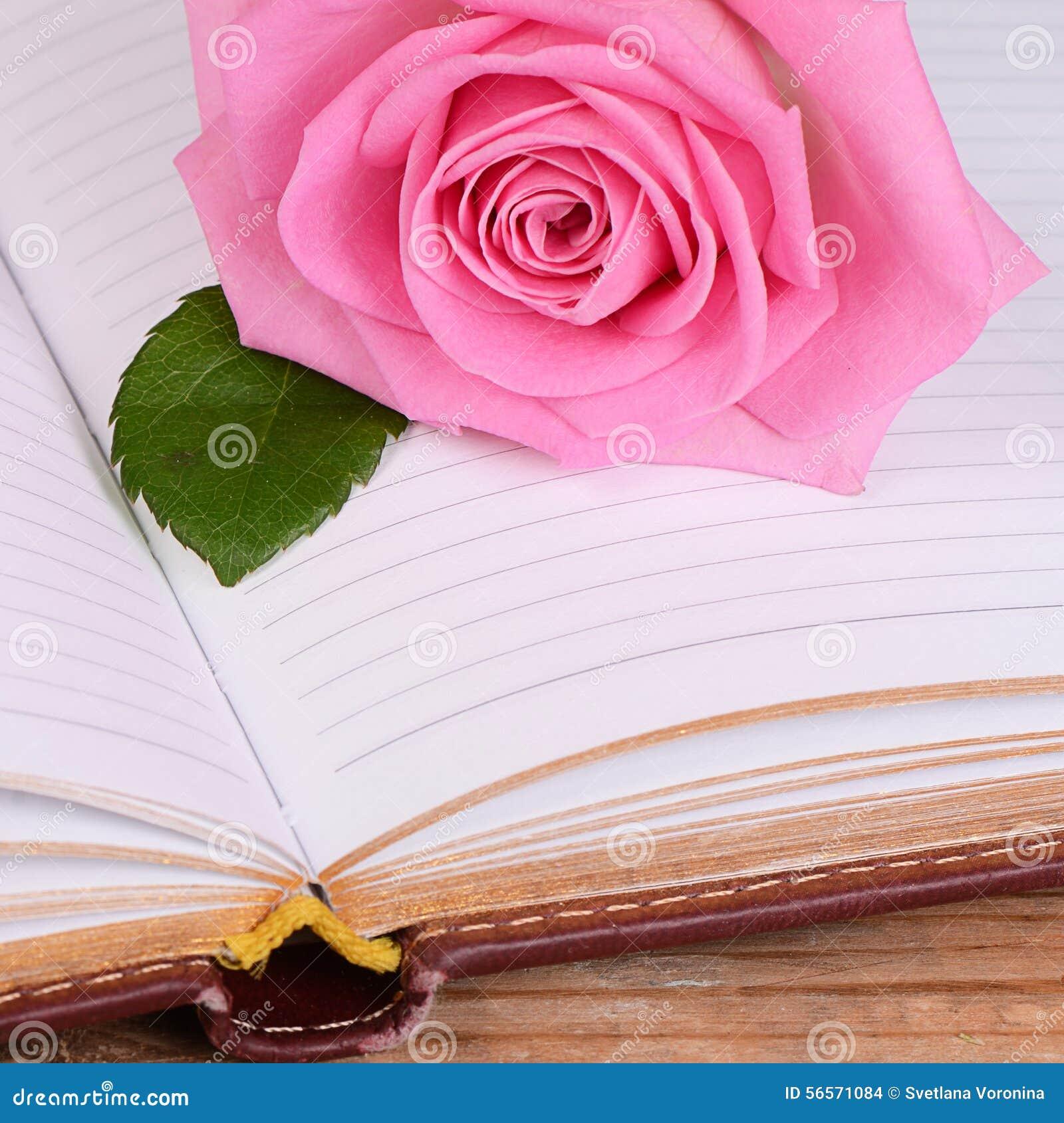Download το βιβλίο αυξήθηκε στοκ εικόνες. εικόνα από έγγραφο, βιβλίων - 56571084