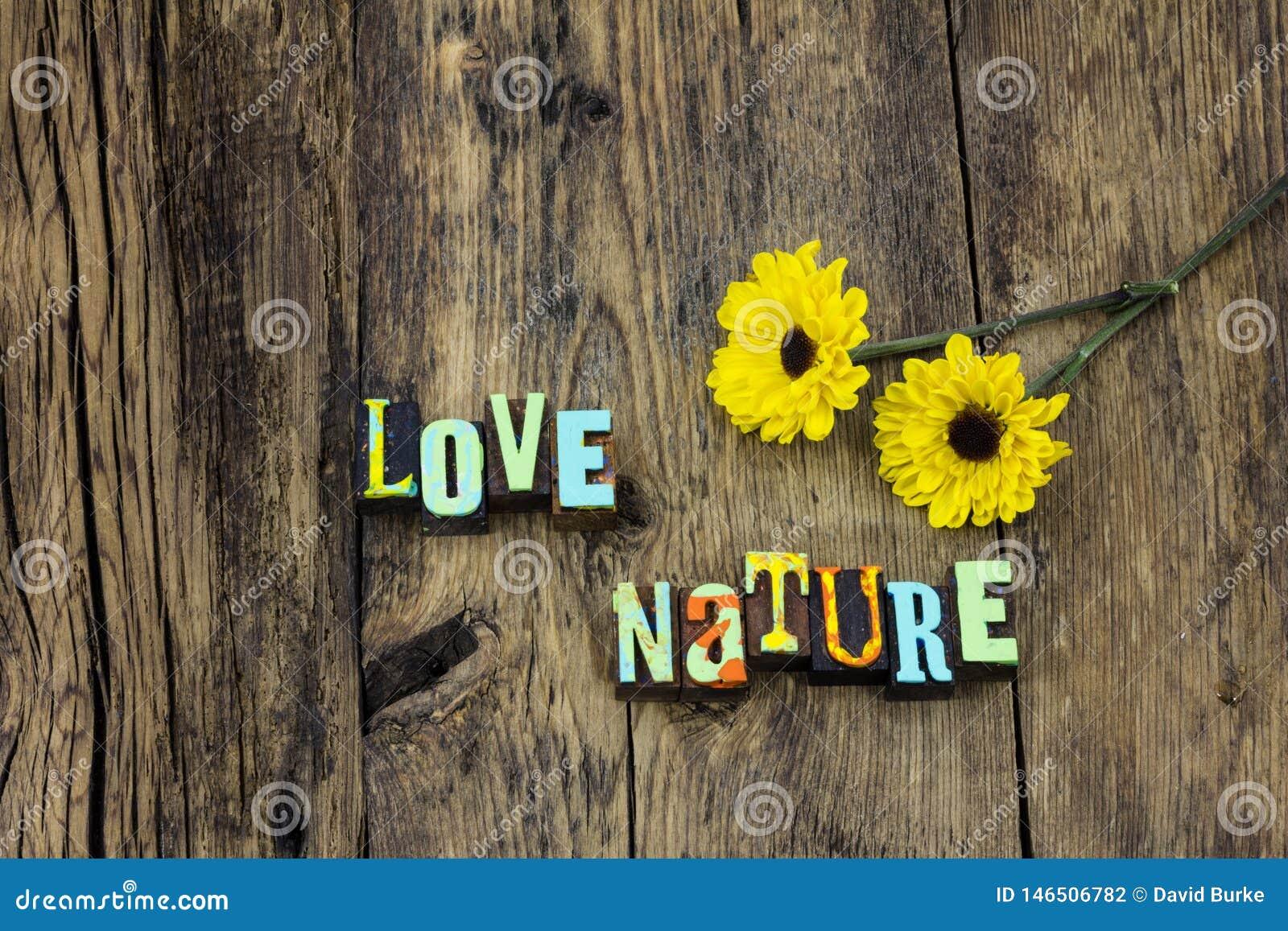 Το γήινο φυσικό περιβάλλον φύσης αγάπης προστατεύει το οικοσύστημα