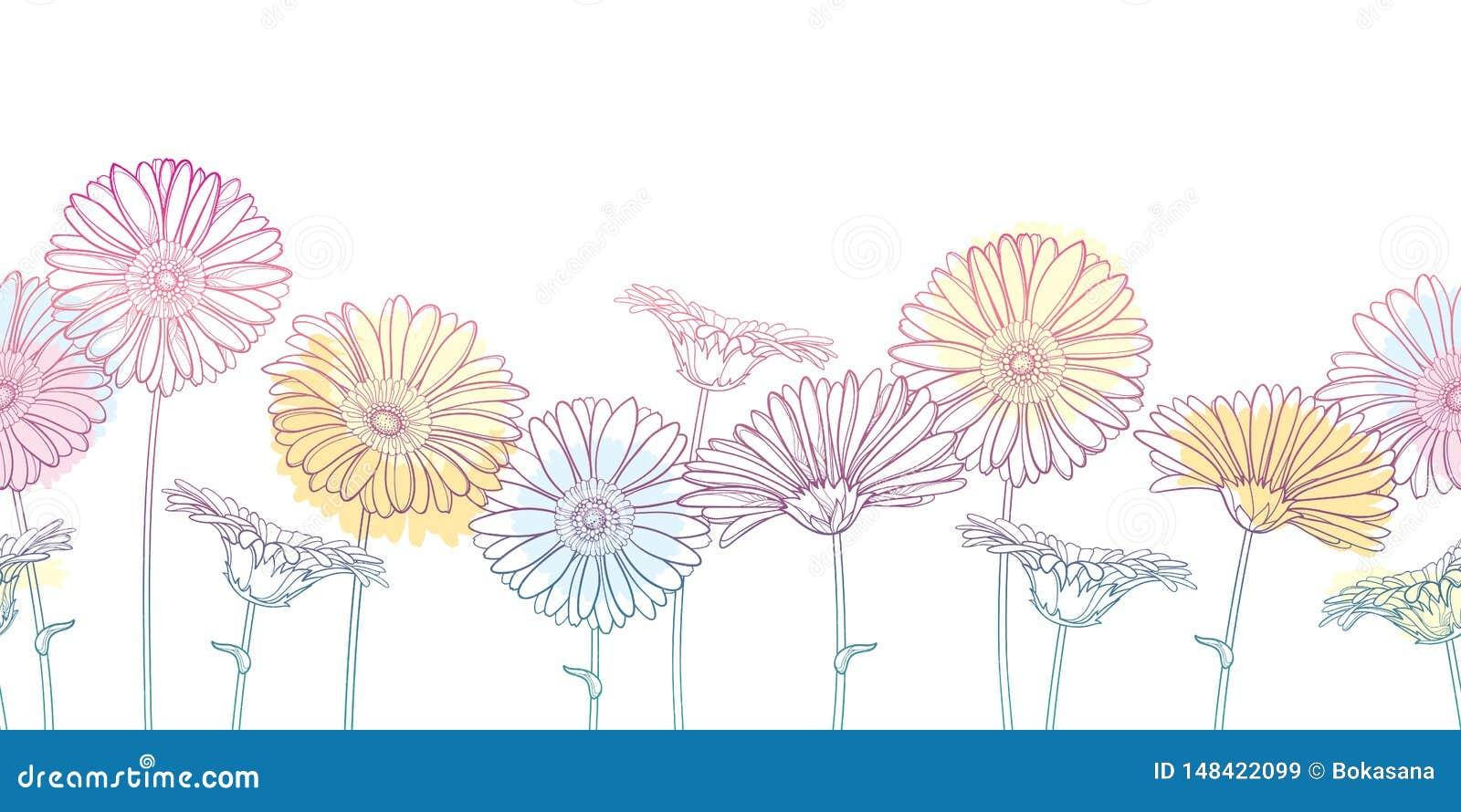 Το διανυσματικό οριζόντιο άνευ ραφής σχέδιο με την περίληψη Gerbera ή Gerber ανθίζει στο ροζ και το πορτοκάλι κρητιδογραφιών στο