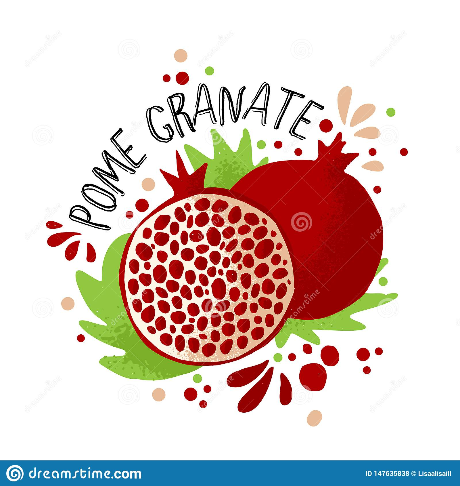 Το διανυσματικό χέρι σύρει τη χρωματισμένη απεικόνιση ροδιών Πορφυρά, κόκκινα ρόδια με τα κόκκαλα πολτού και φρούτων και τα πράσι