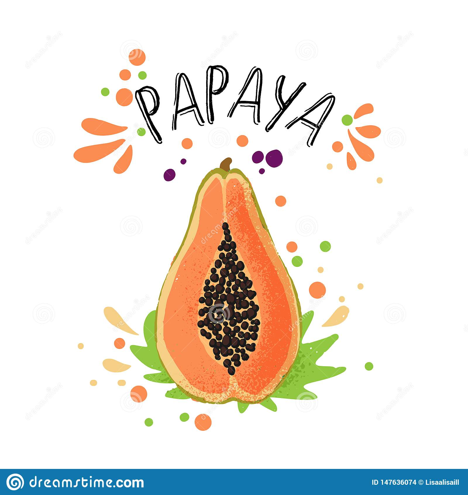 Το διανυσματικό χέρι σύρει τη χρωματισμένη papaya απεικόνιση Πορτοκαλί, κίτρινο papaya με τα κόκκαλα πολτού και φρούτων και τα πρ