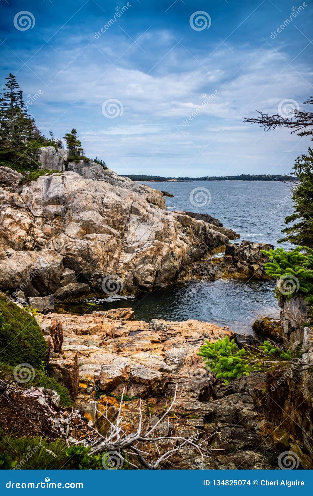 Το καλό Au Haut λιμενικών νησιών παπιών στο εθνικό πάρκο Acadia, Μαίην