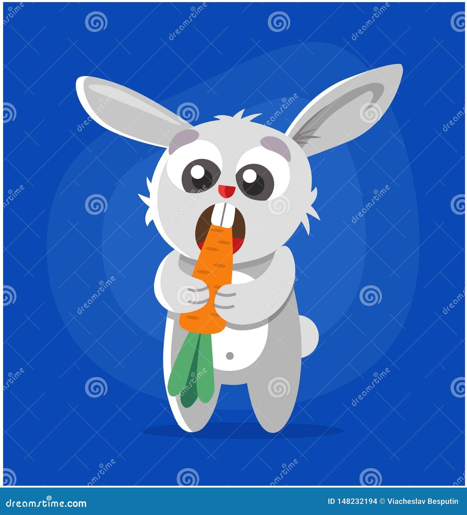 Το κουνέλι τρώει το καρότο