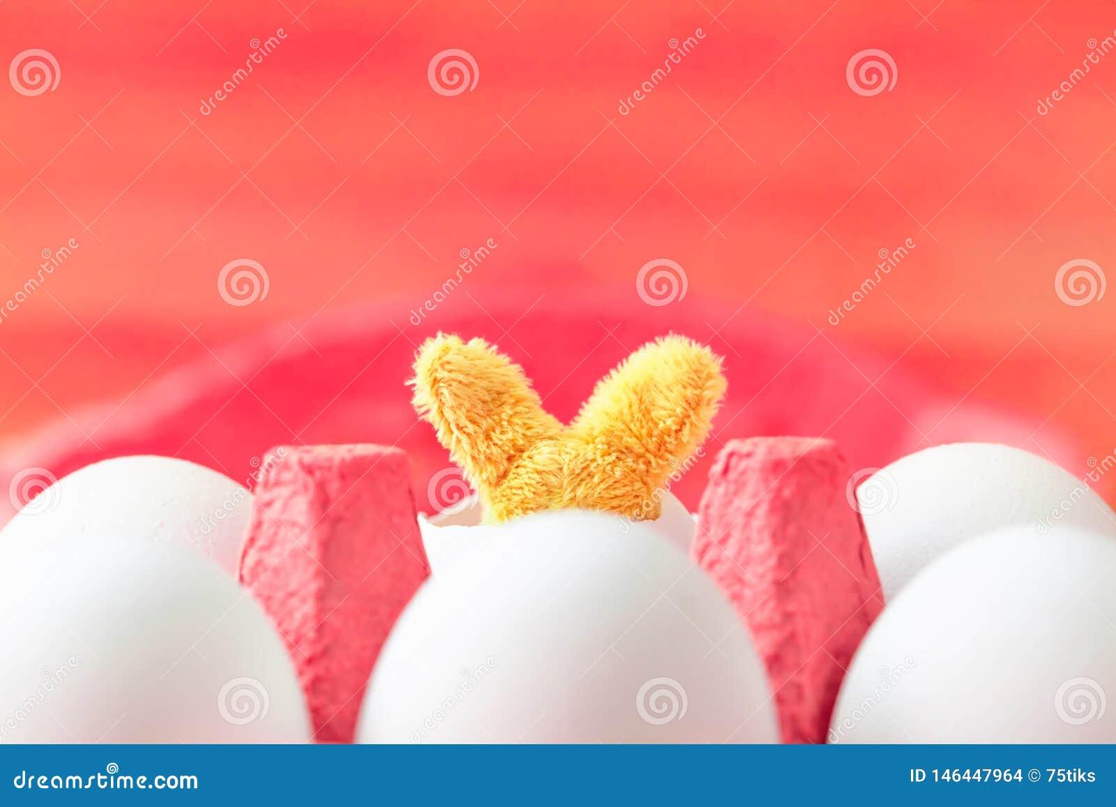 Το λαγουδάκι Πάσχας μέσα στο χαρτοκιβώτιο αυγών παίρνει την επιφυλακή