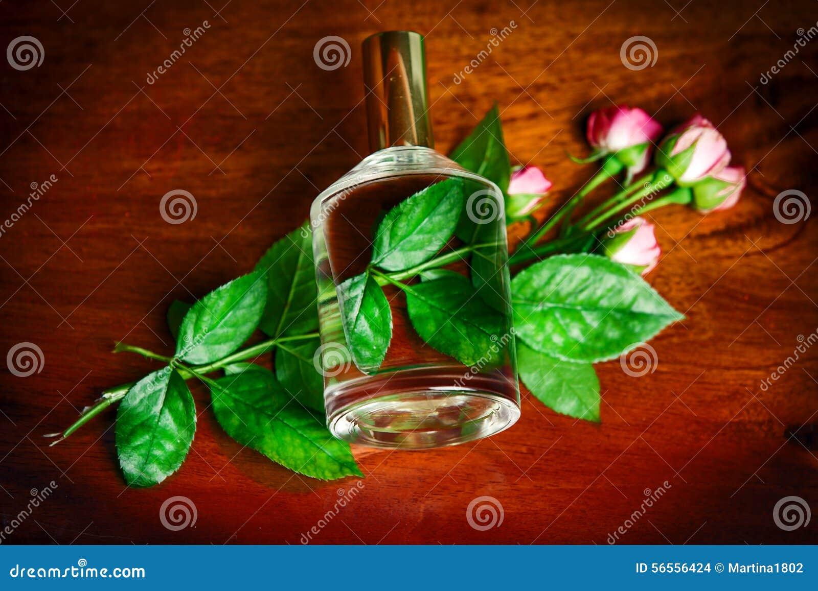 Download Το μπουκάλι Parfume με αυξήθηκε Στοκ Εικόνες - εικόνα από κολωνία, κανένας: 56556424