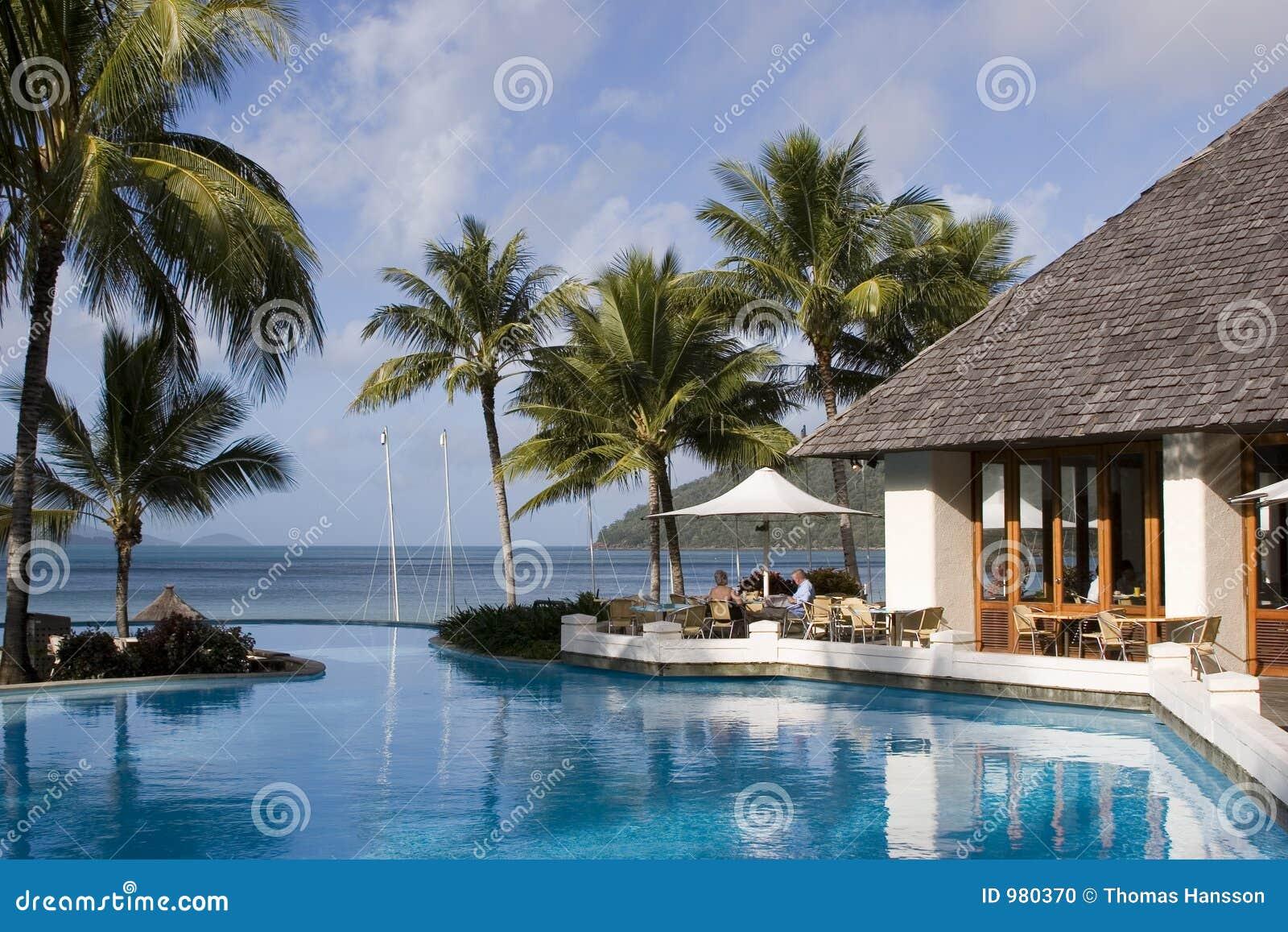 το νησί του Χάμιλτον ράβδων κολυμπά επάνω whitsundays