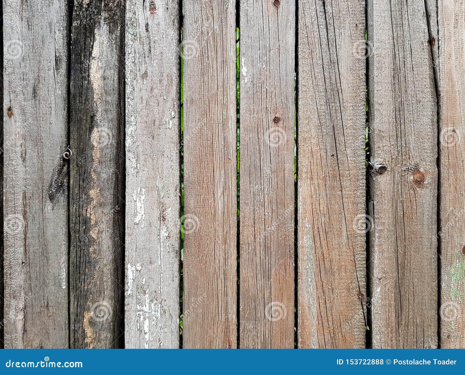 Το ξύλινο υπόβαθρο πινάκων σιταποθηκών Ξύλινη σύσταση τοίχων Grunge Ξύλινη φύση δέντρων σύστασης, υπόβαθρο κατασκευασμένο