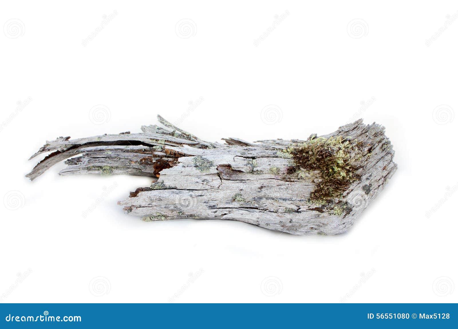 Download Το ξύλο είναι πολύ παλαιό στο άσπρο υπόβαθρο Στοκ Εικόνες - εικόνα από γη, φυσικός: 56551080