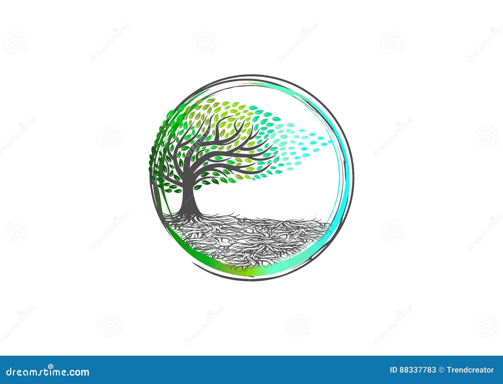 Το λογότυπο δέντρων, γιόγκα φύσης, εγκαταστάσεις χαλαρώνει το σύμβολο, το εικονίδιο SPA, το οργανικό σημάδι μασάζ, το wellness αί