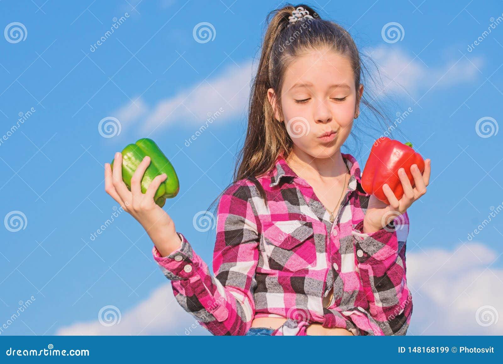Το παιδί κρατά τα ώριμα homegrown λαχανικά συγκομιδών πτώσης συγκομιδών πιπεριών Χορτοφάγος έννοια Ποιο πιπέρι εσείς θα επέλεγε Π