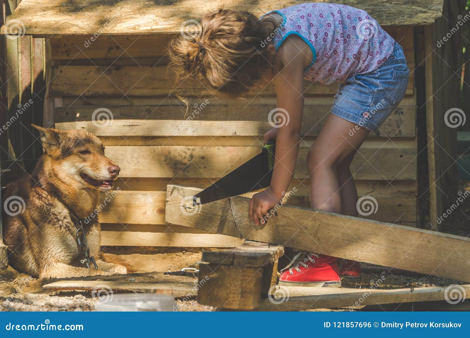 Το παιδί χτίζει το θάλαμο για τα σκυλιά