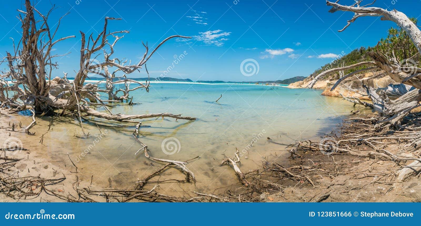 Το πανόραμα η παραλία στα whitsundays, Αυστραλία