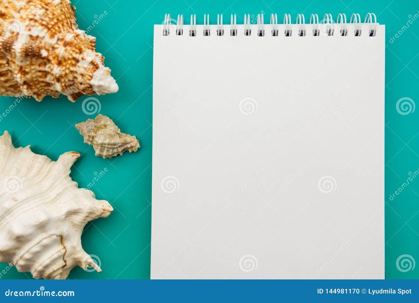 Ένα βιβλίο στις θαλάσσιες διακοσμήσεις Θέματα θάλασσας Διάθεση θάλασσας Μνήμες των διακοπών Λεύκωμα φωτογραφιών για τις διακοπές
