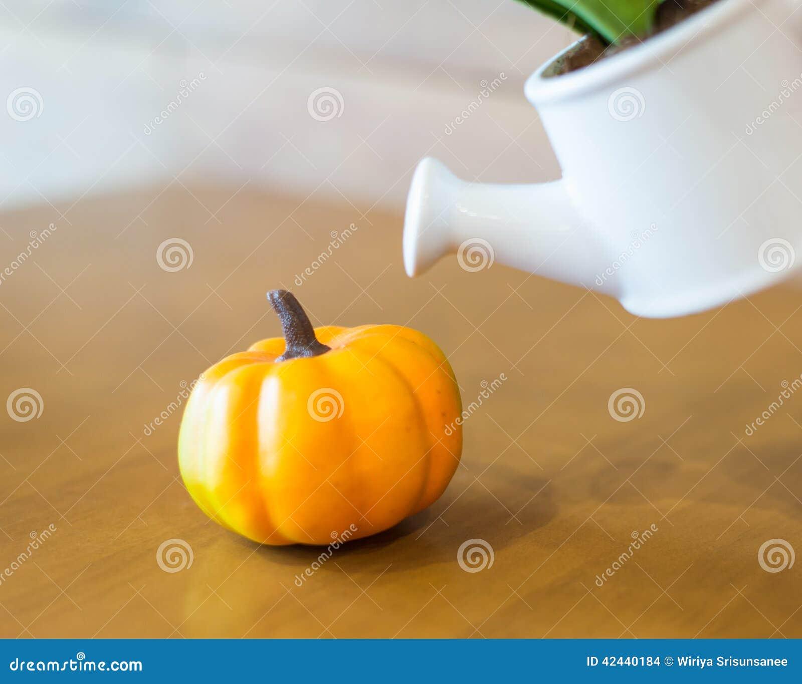 Το πότισμα μπορεί και να φυτεψει με το plumkin
