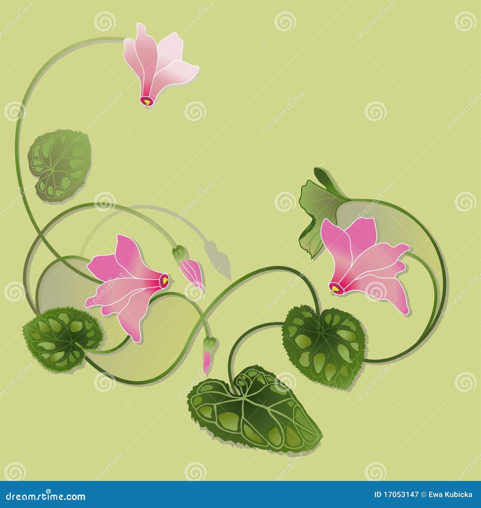 το ροζ απεικόνισης