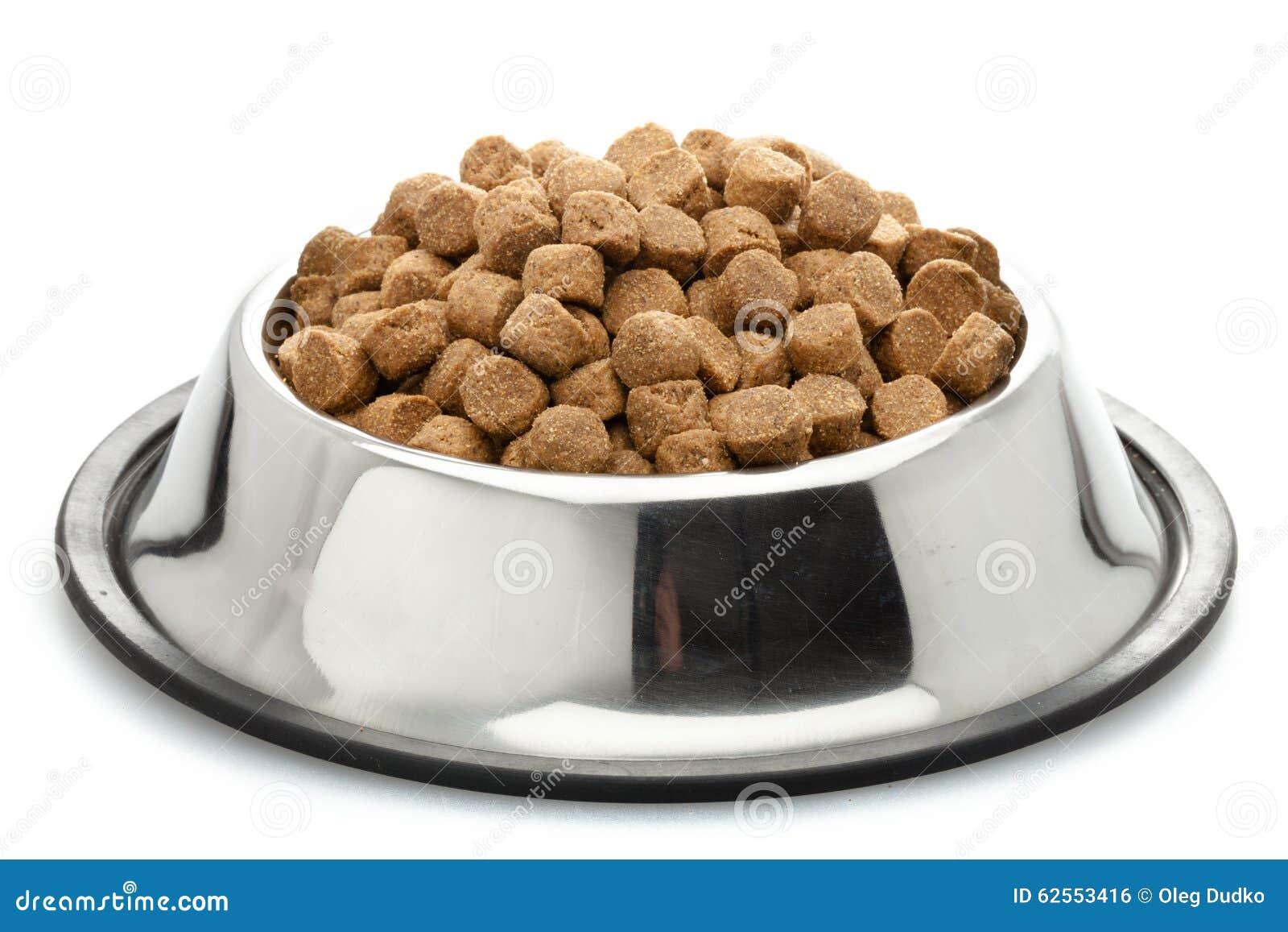 το σκυλί τρώει τα τρόφιμα μικρά θέλει