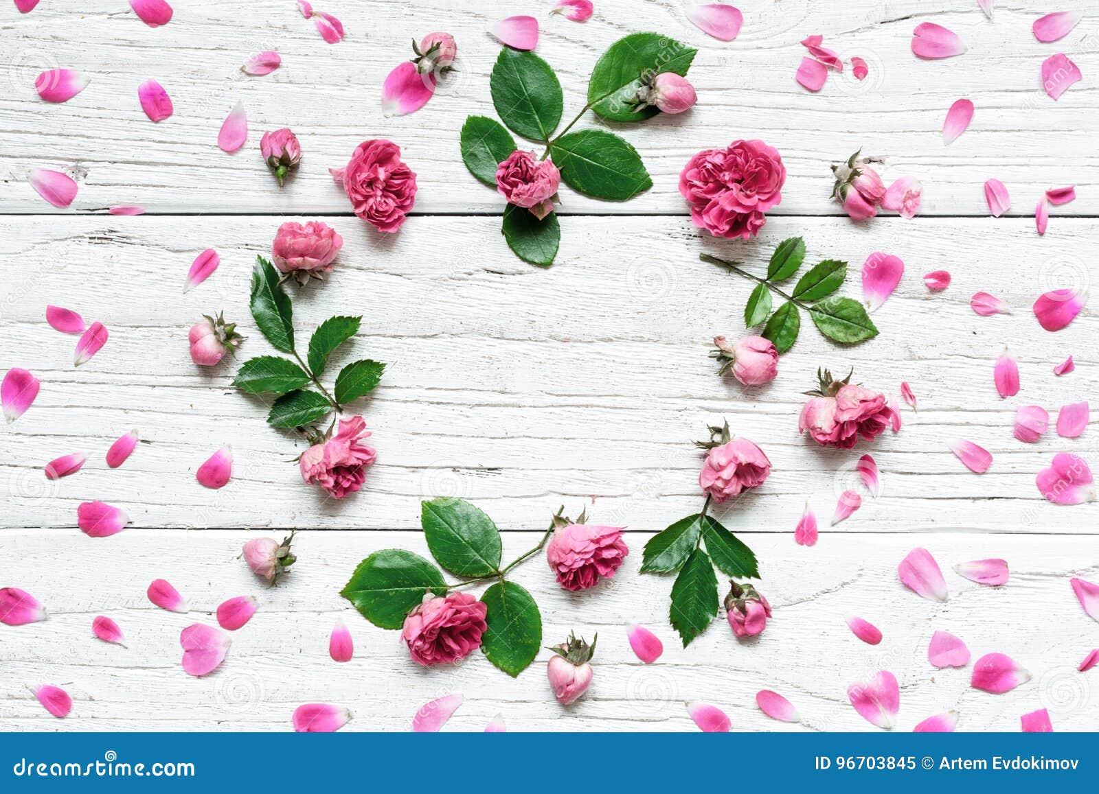 Το στρογγυλό σχέδιο λουλουδιών πλαισίων με τα τριαντάφυλλα ανθίζει, οφθαλμοί, πέταλα, κλάδοι και φύλλα