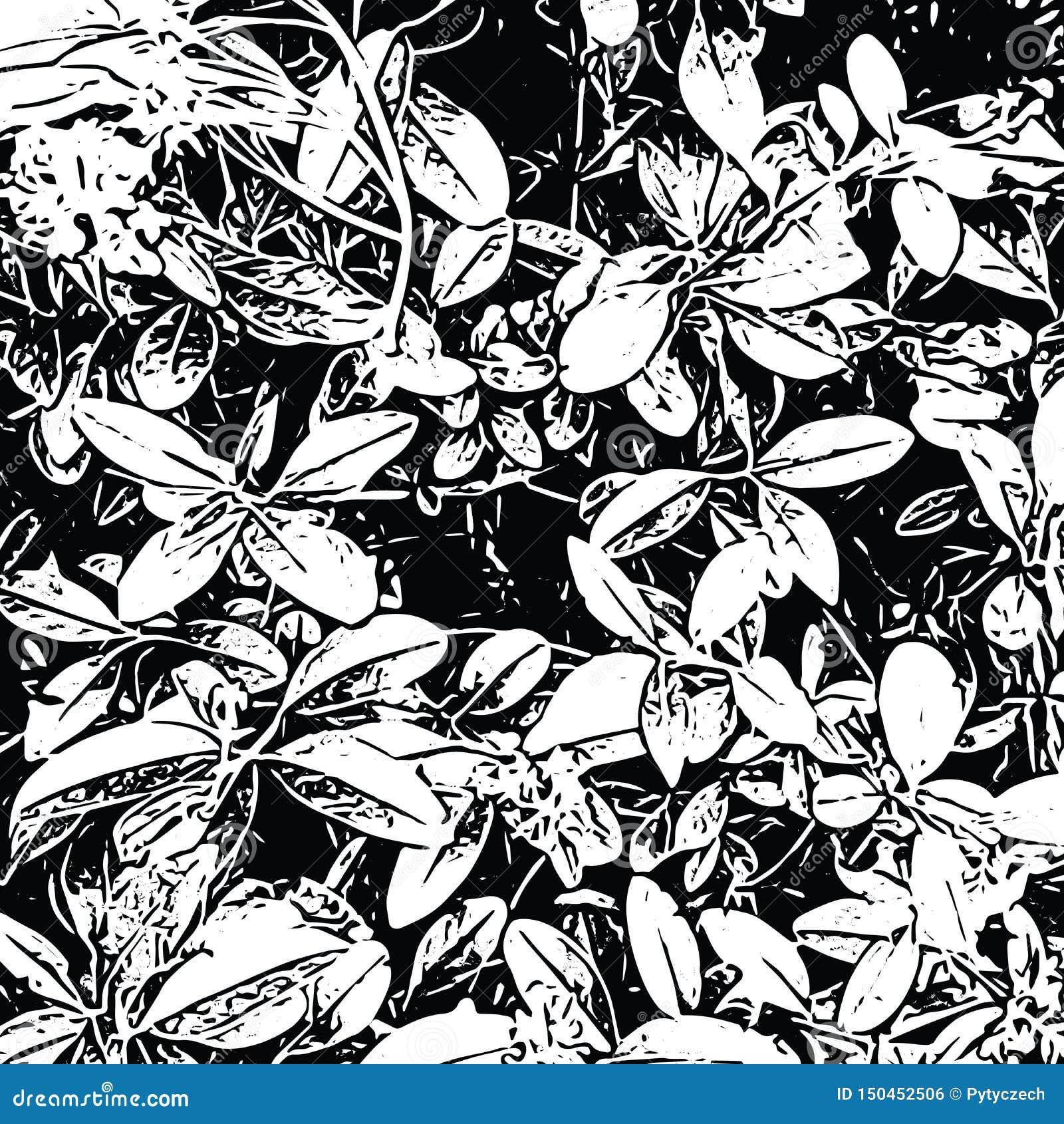 Το φυσικό floral σχέδιο Grunge του θάμνου βγάζει φύλλα Αφηρημένο διανυσματικό υπόβαθρο σύστασης σε γραπτό
