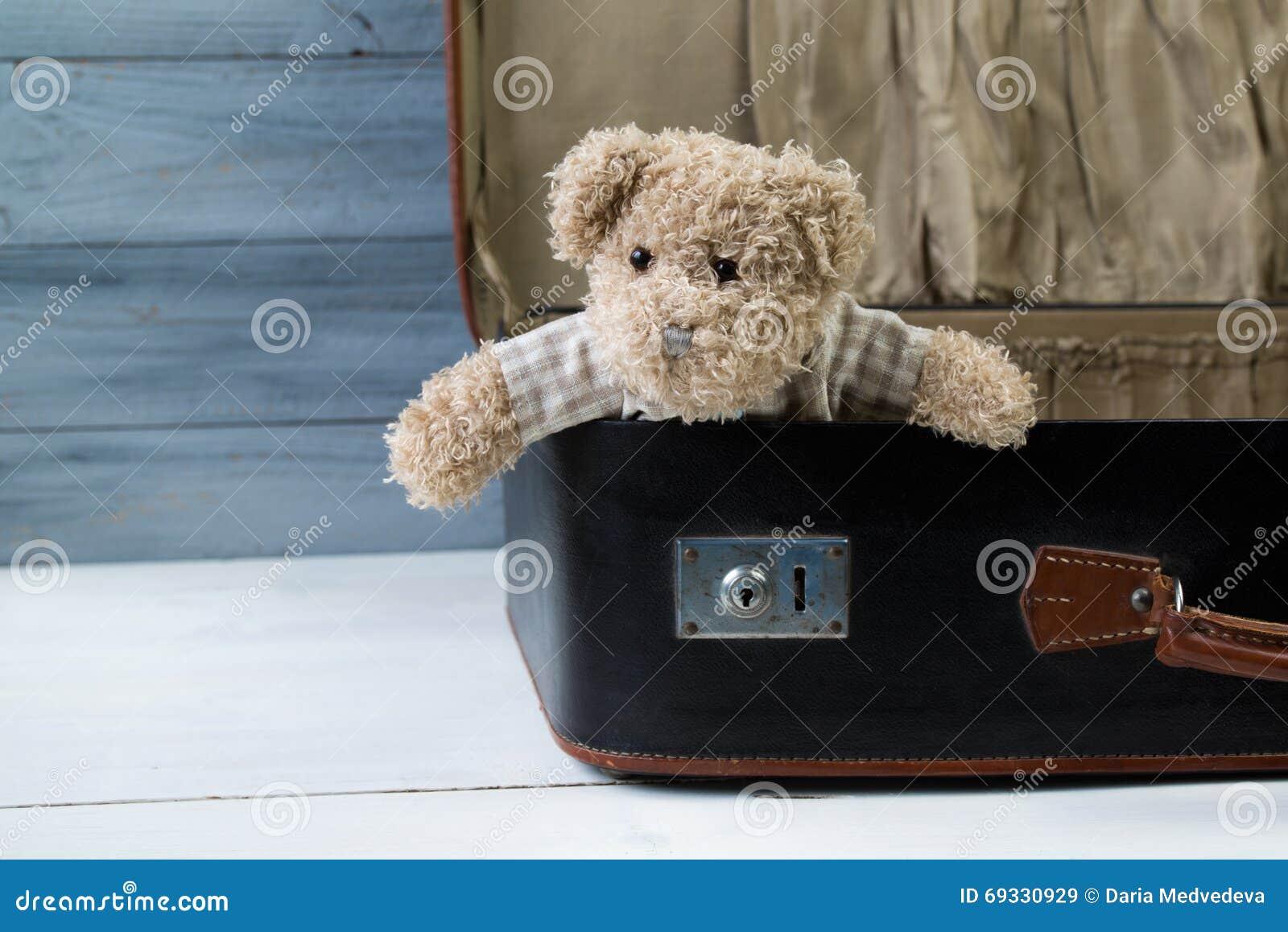 Το Teddy αντέχει σε μια παλαιά βαλίτσα δέρματος