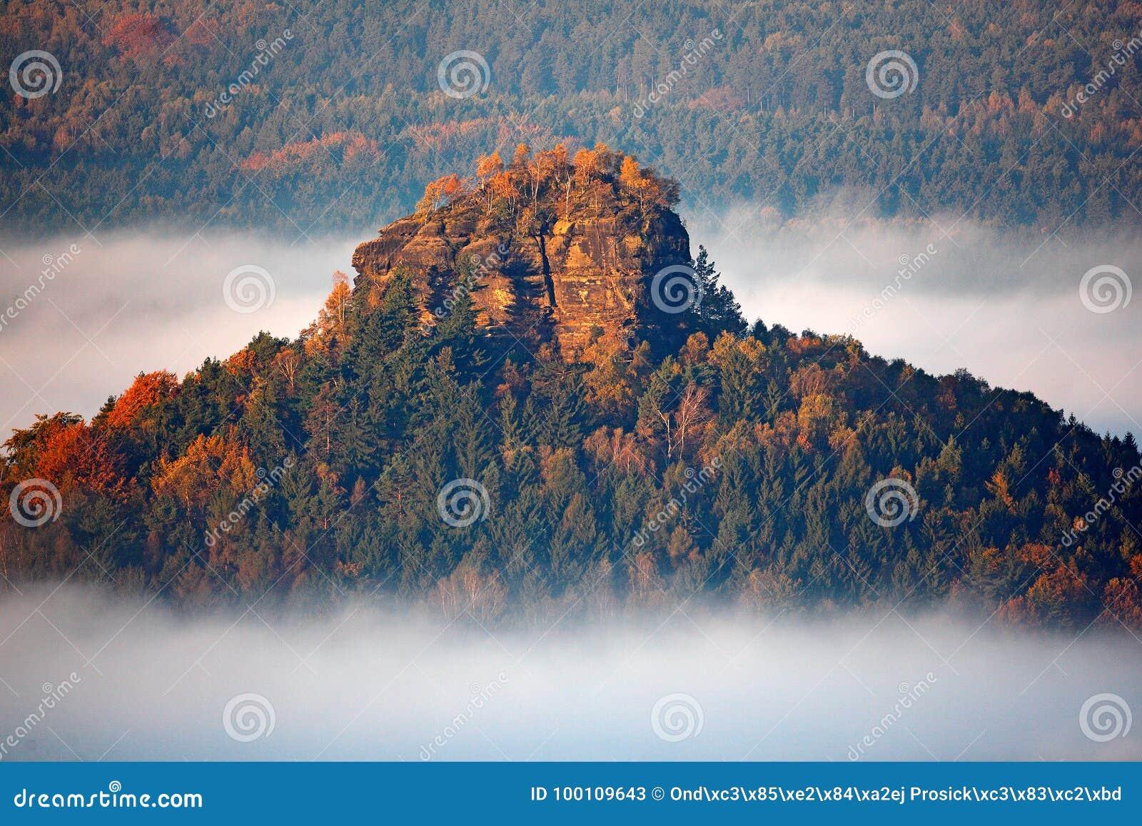 Το Zirkelstein με τα δέντρα φθινοπώρου στην ομίχλη καλύπτει, άσπρα κύματα, ομιχλώδες πρωί σε μια κοιλάδα πτώσης της Σαξωνίας Ελβε