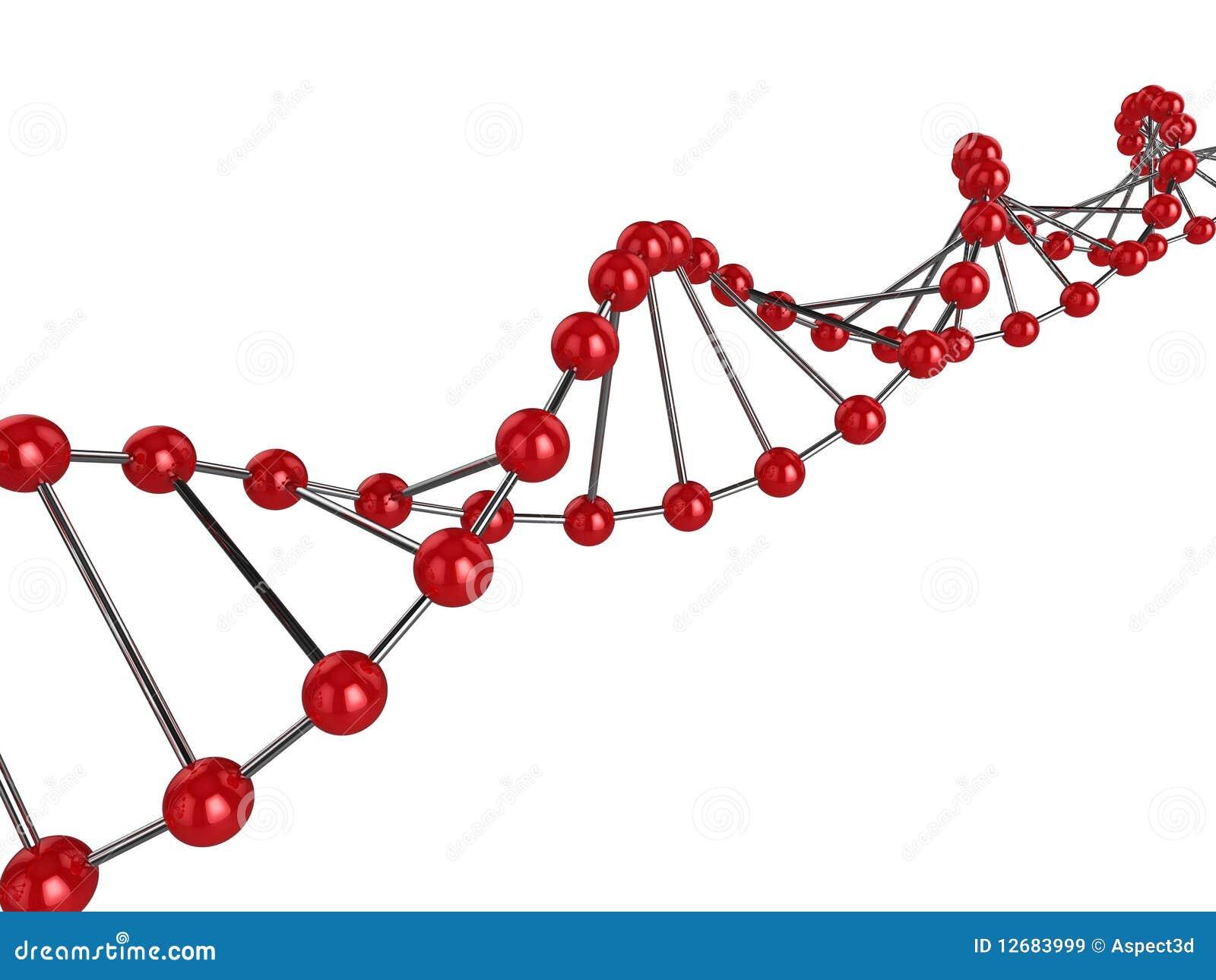 τρισδιάστατο DNA