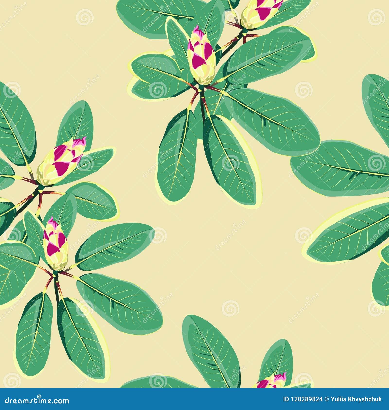 Τροπικά λουλούδια, φύλλα ζουγκλών, λουλούδι παραδείσου Όμορφο άνευ ραφής διανυσματικό floral υπόβαθρο σχεδίων, εξωτική τυπωμένη ύ