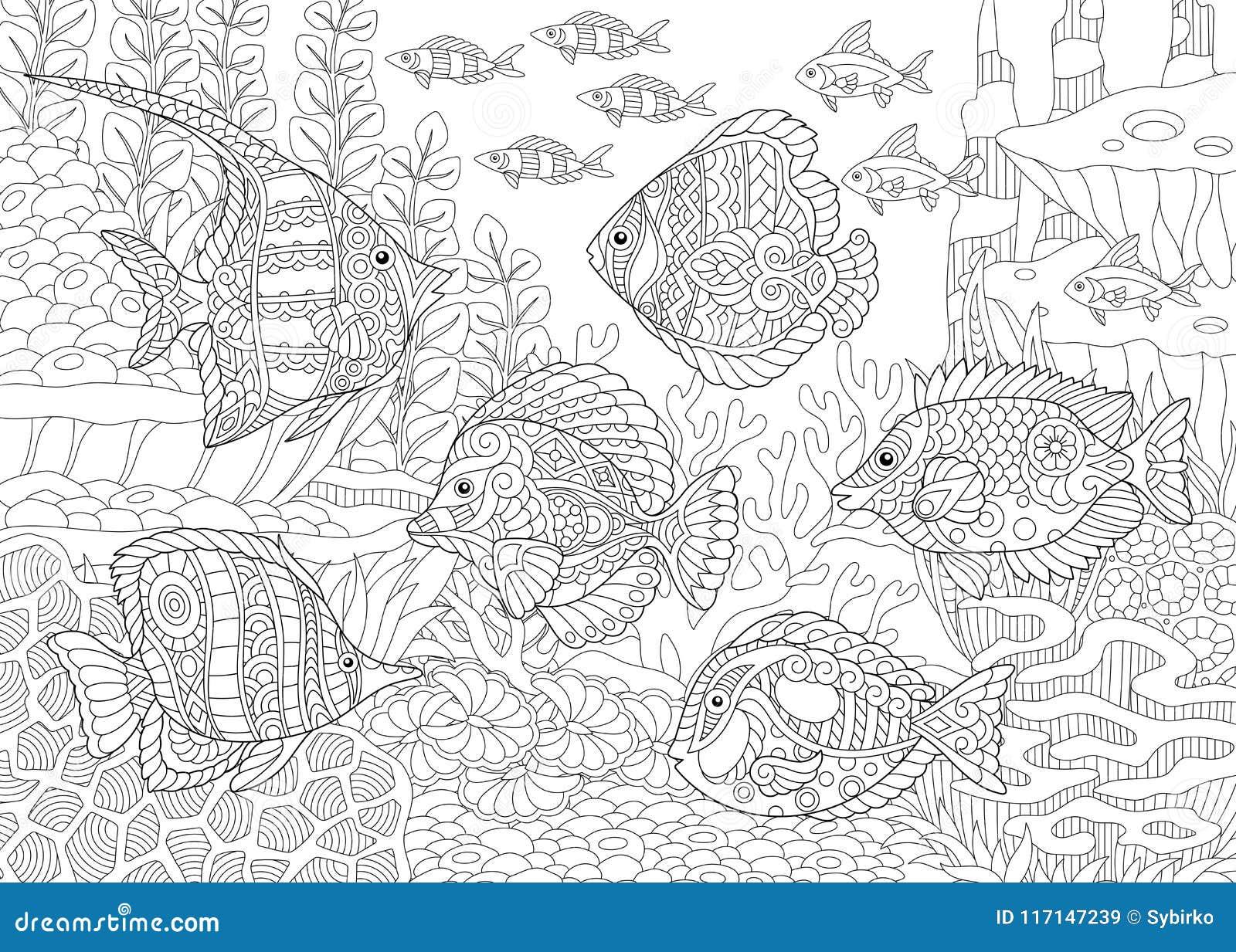 Τροπικά ψάρια Zentangle