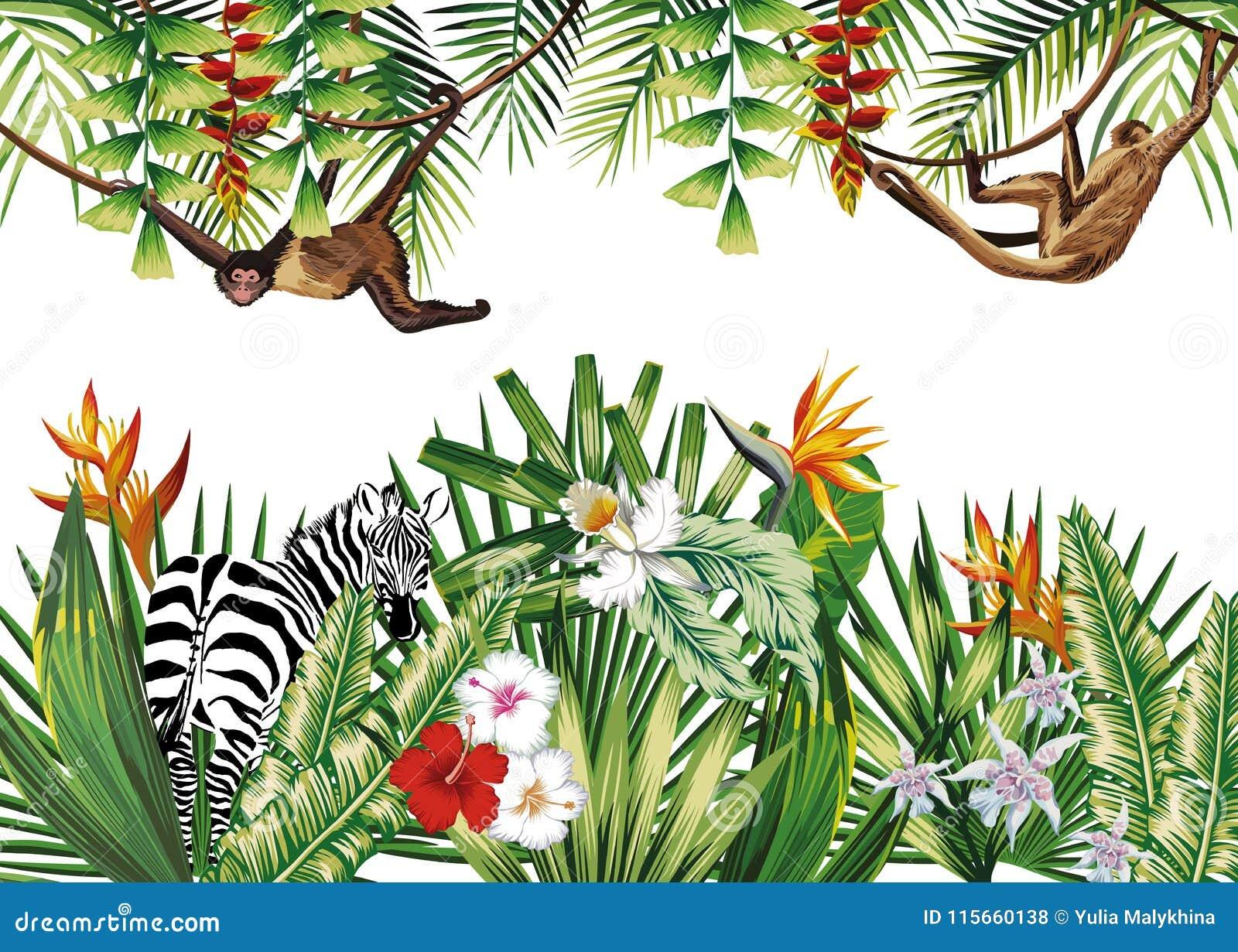 Τροπική απεικόνιση με το με ραβδώσεις πιθήκων εγκαταστάσεων λουλουδιών