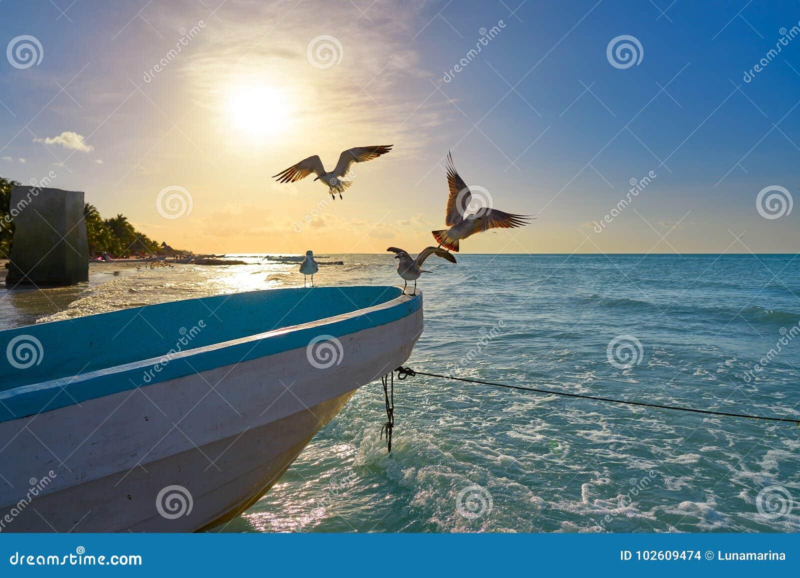 Τροπικό νησί Holbox σε Quintana Roo Μεξικό