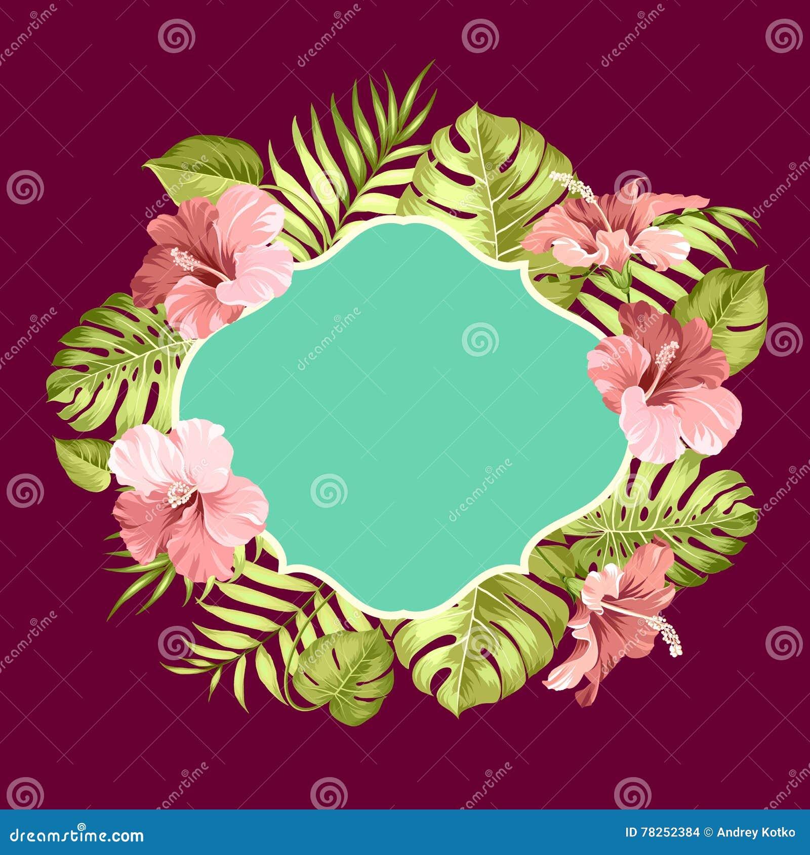 Τροπικό πλαίσιο λουλουδιών