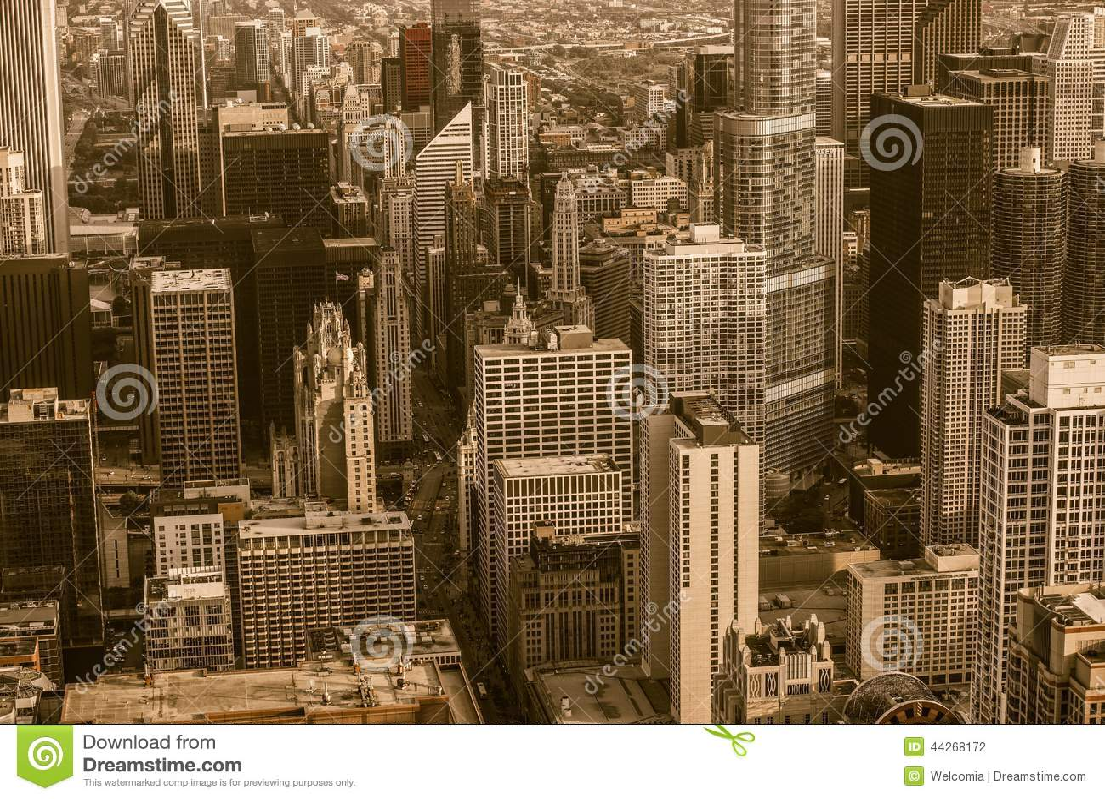 τρύγος του Σικάγου