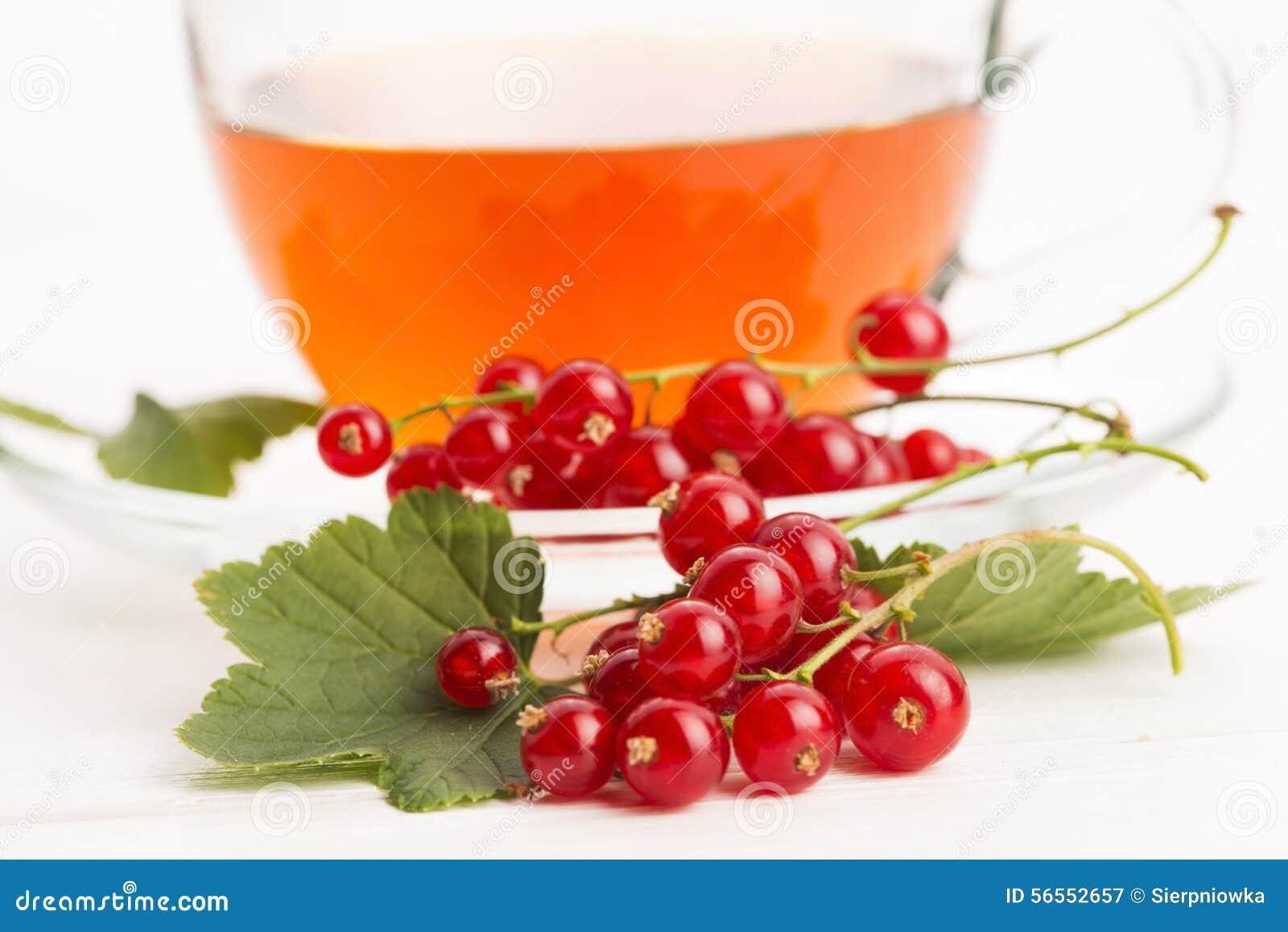 Download Τσάι στο φλυτζάνι και τη φρέσκια κόκκινη σταφίδα Στοκ Εικόνα - εικόνα από ώριμος, ξινίστε: 56552657