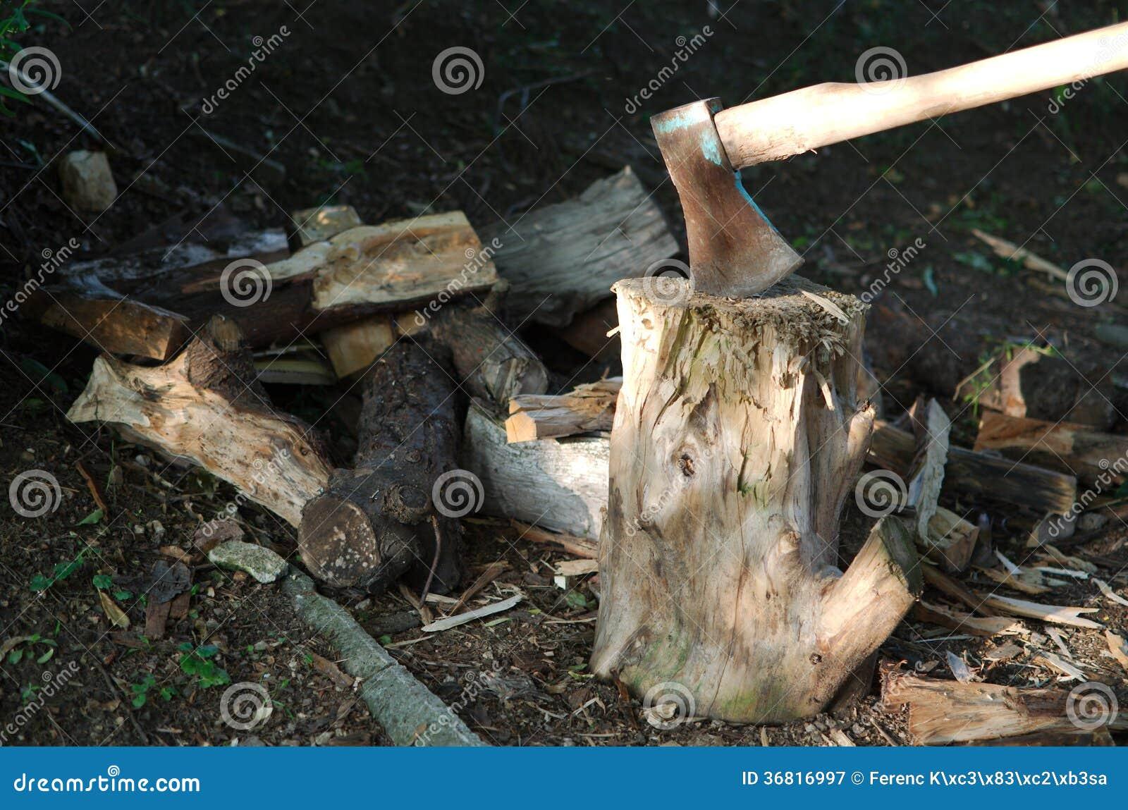 Τσεκούρι στο ξύλο