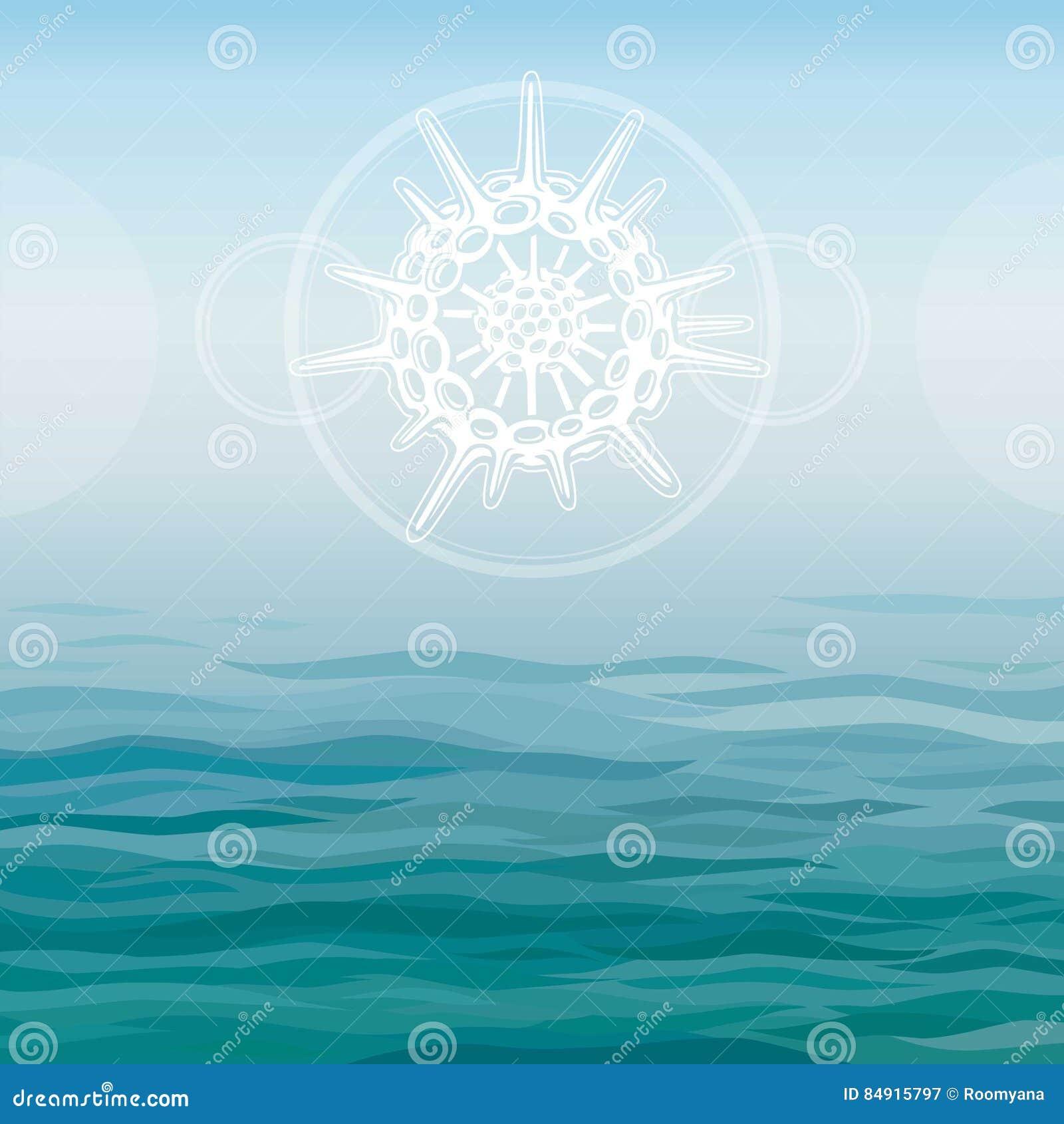 Τυποποιημένο σχέδιο radiolaria - ο στοιχειώδης θαλάσσιος οργανισμός