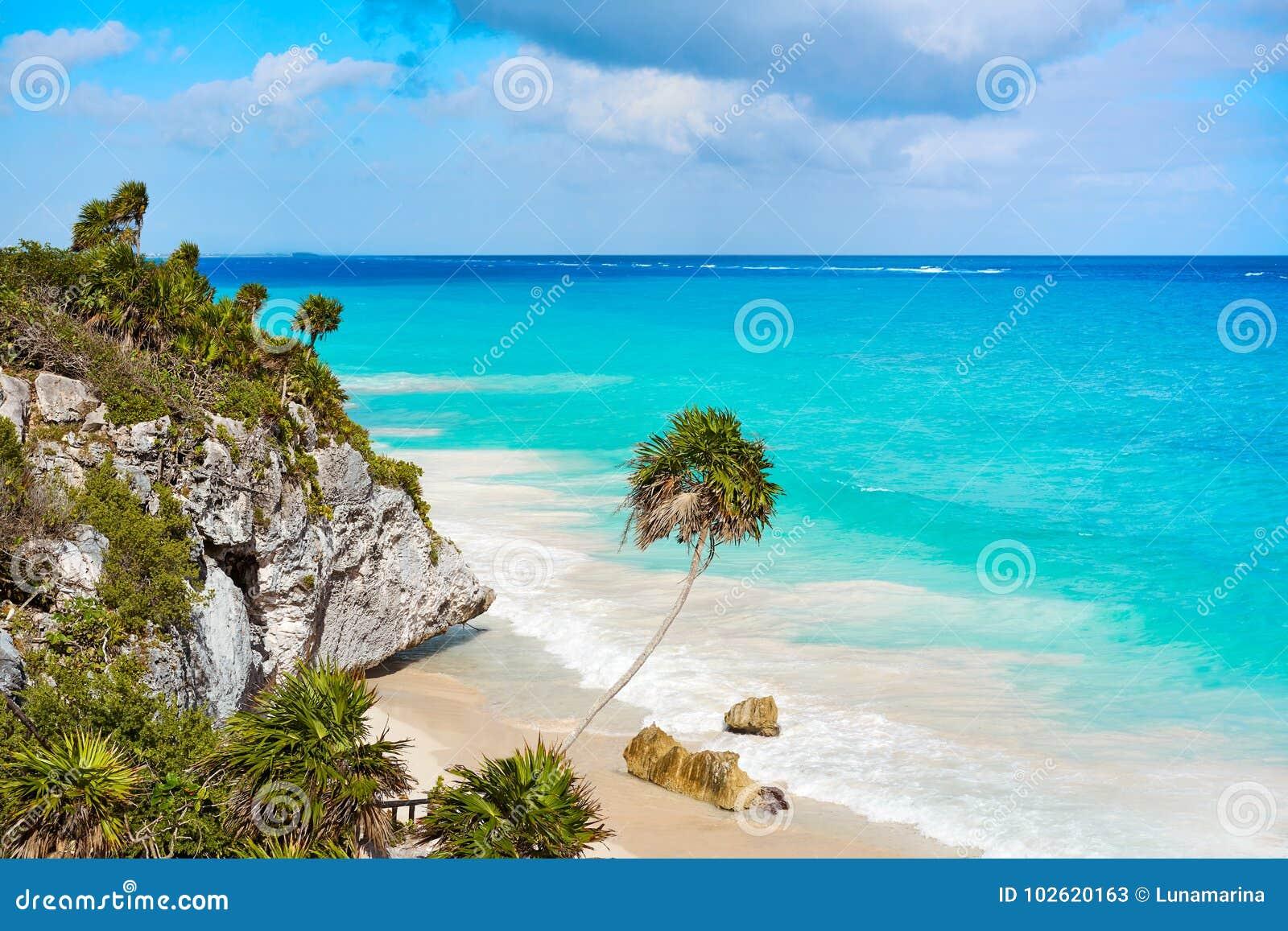 Τυρκουάζ φοίνικας παραλιών Tulum σε Riviera Maya σε των Μάγια