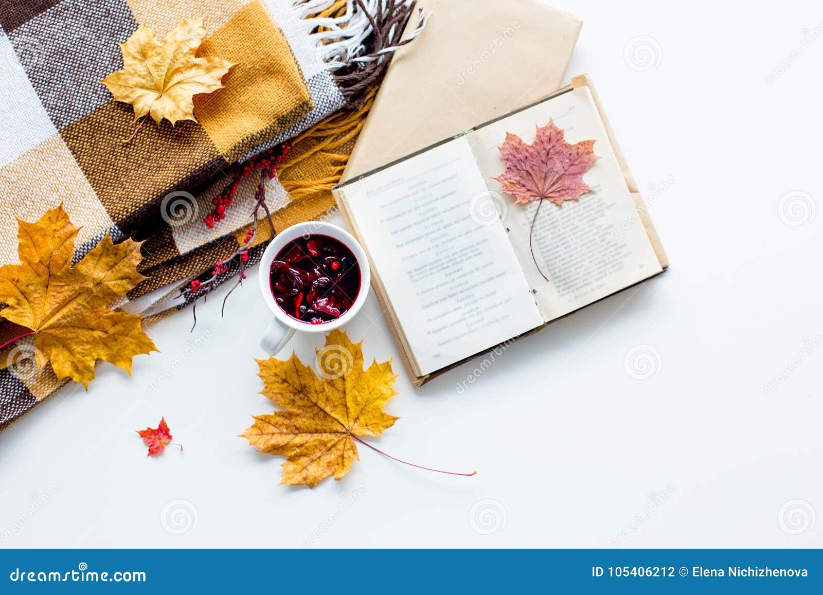 Download Υπόβαθρο με τα κίτρινα φύλλα φθινοπώρου Στοκ Εικόνες - εικόνα από τραχύς, φύλλωμα: 105406212