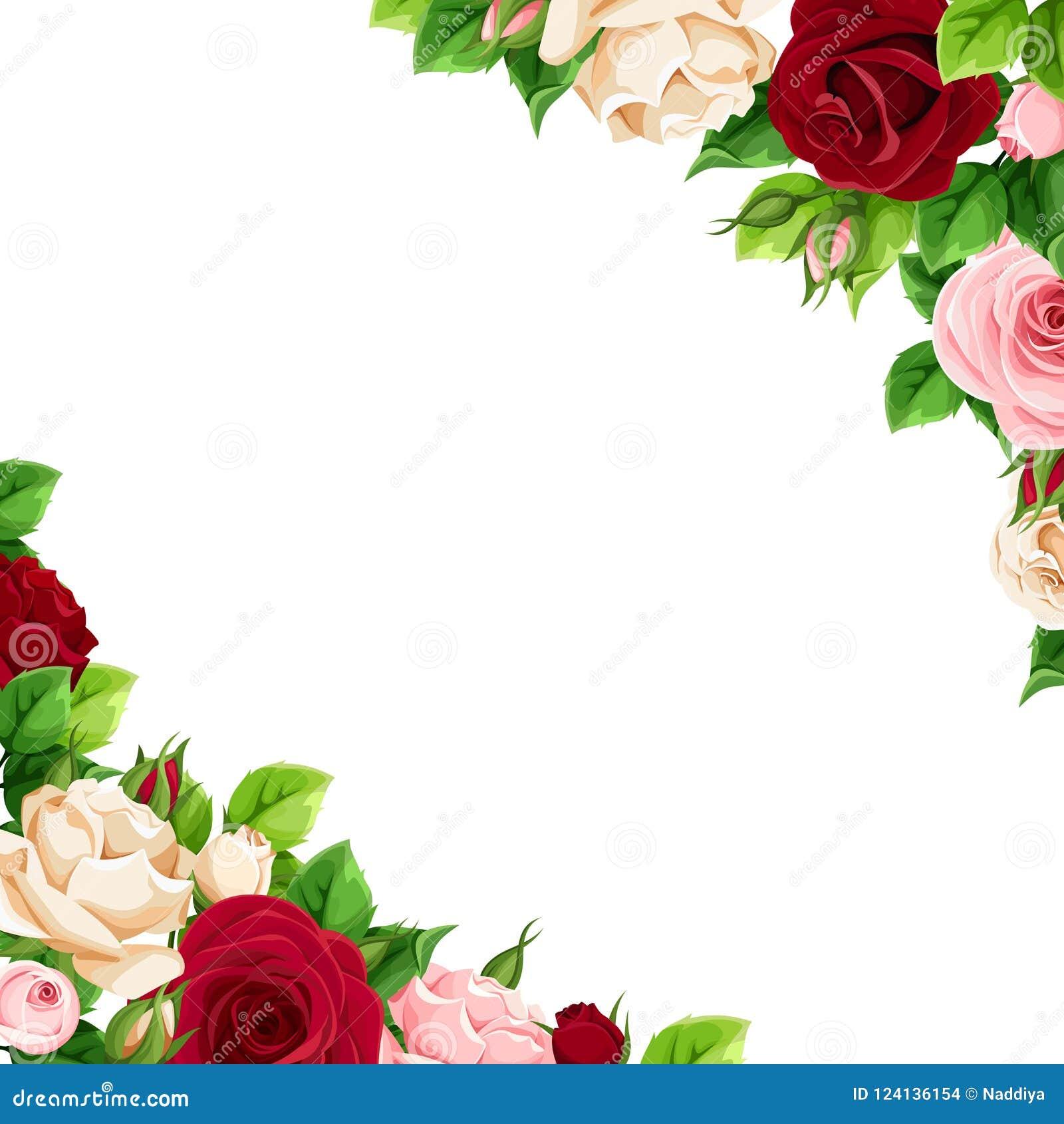 Υπόβαθρο με το ροζ, burgundy και τα λευκά τριαντάφυλλα επίσης corel σύρετε το διάνυσμα απεικόνισης