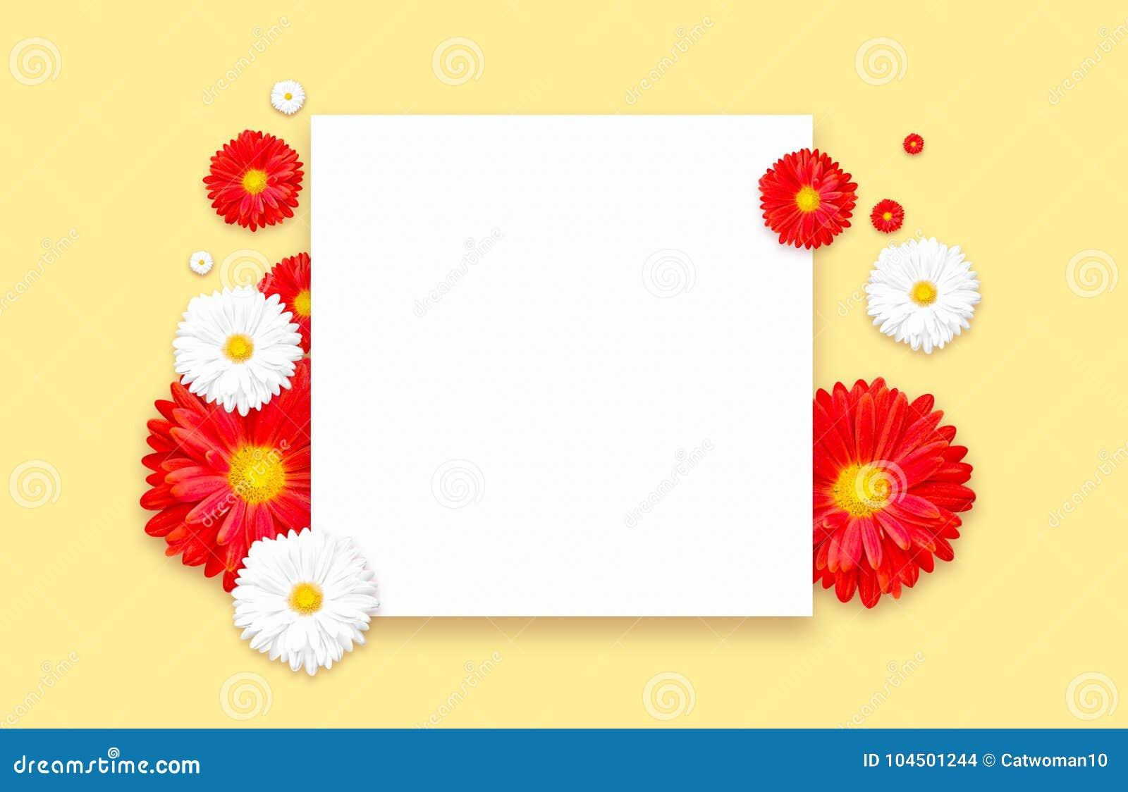 Υπόβαθρο με το όμορφο ζωηρόχρωμο λουλούδι Ιπτάμενα ταπετσαριών, πρόσκληση, αφίσες, φυλλάδιο, έκπτωση αποδείξεων