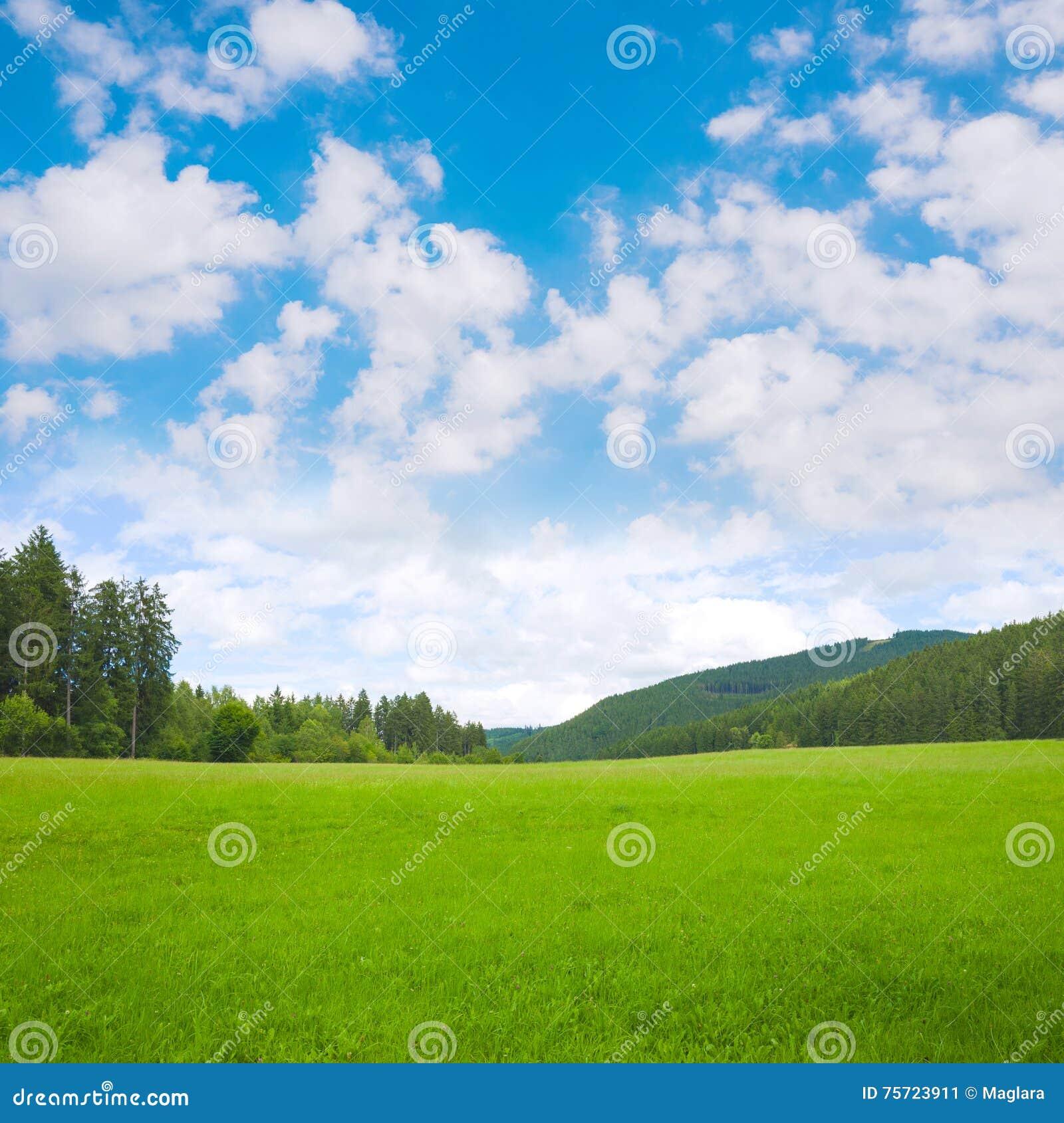 Υπόβαθρο τοπίων φύσης με τη χλόη, το λιβάδι και το μπλε ουρανό