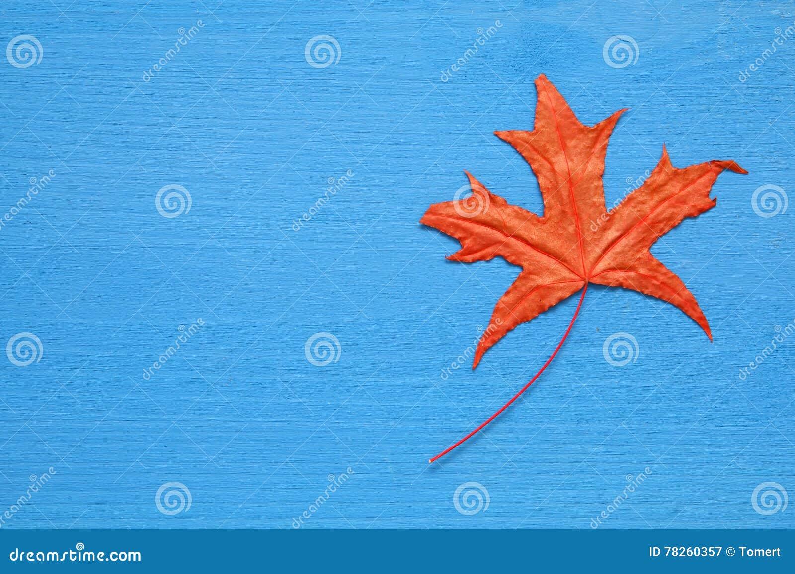 Υπόβαθρο φθινοπώρου με τα ξηρά φύλλα στον ξύλινο πίνακα