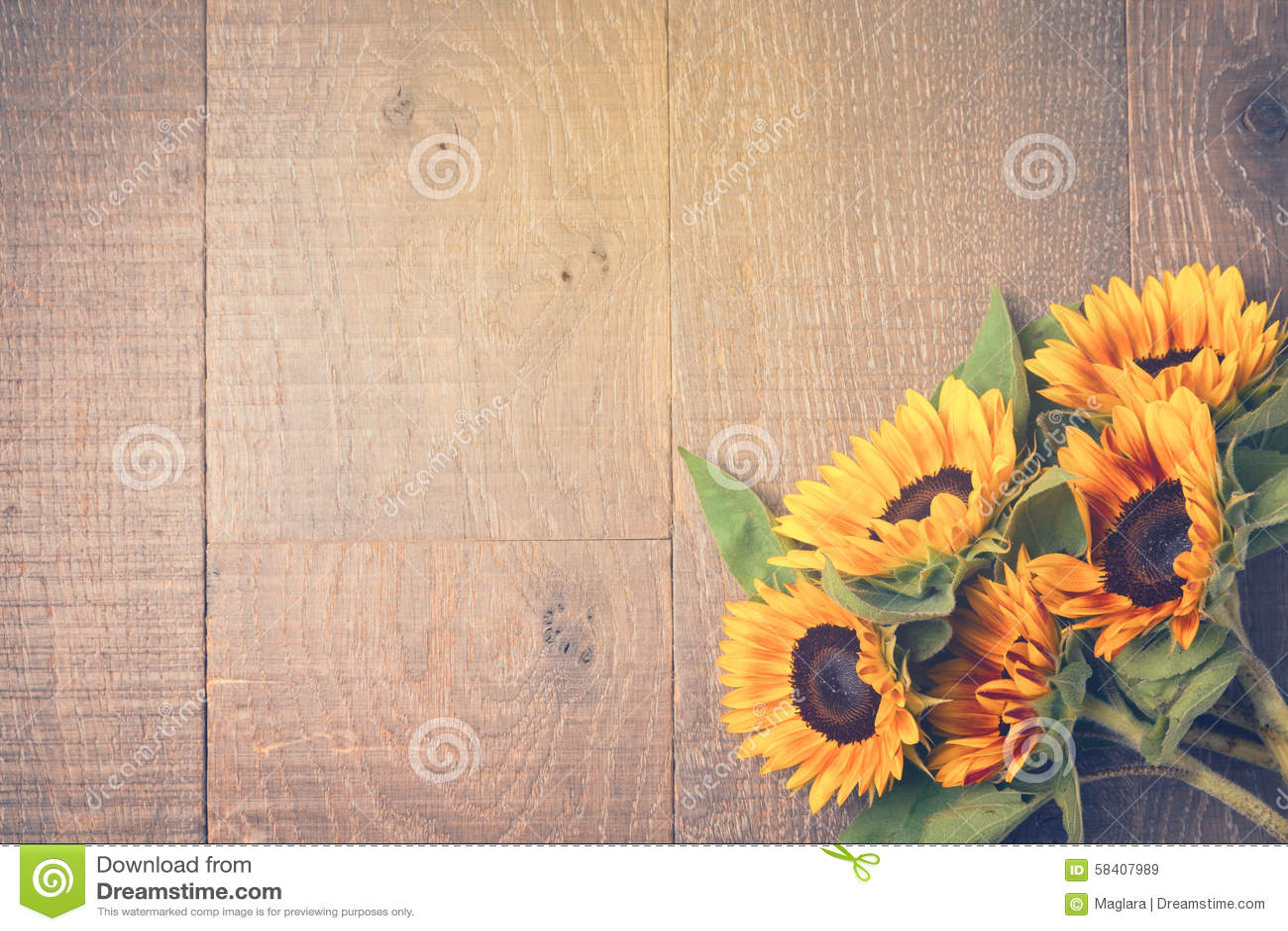 Υπόβαθρο φθινοπώρου με τους ηλίανθους στον ξύλινο πίνακα επάνω από την όψη Αναδρομική επίδραση φίλτρων
