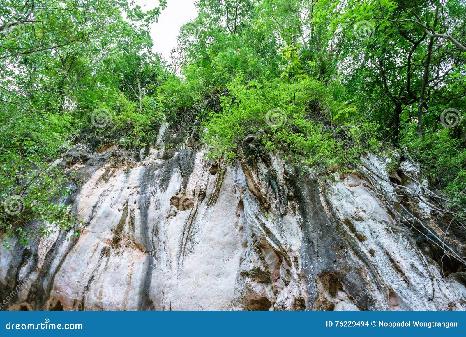 Υψηλός δύσκολος απότομος βράχος στο δάσος