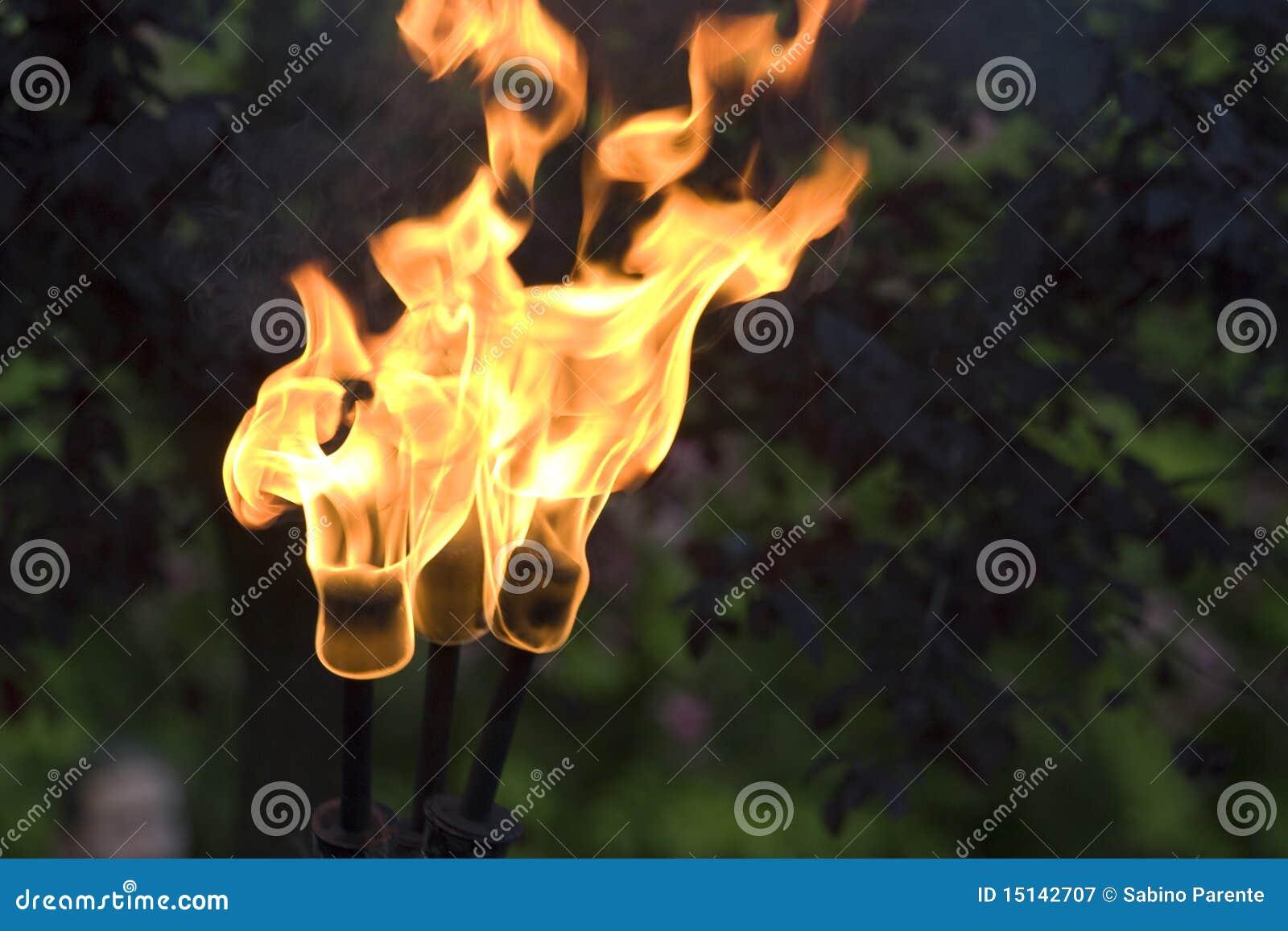 φανός πυρκαγιάς
