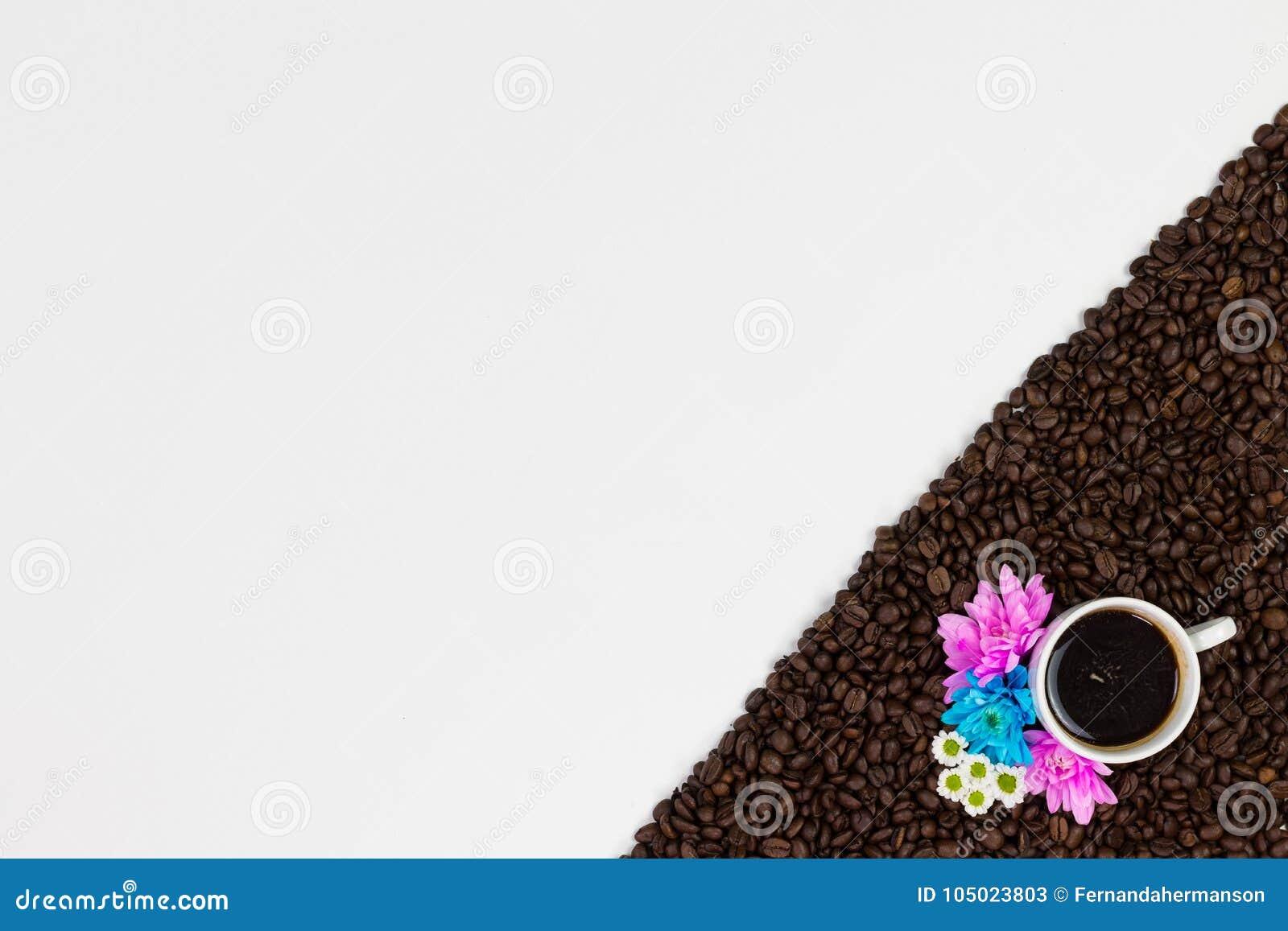 Φασόλια και λουλούδια καφέ στο άσπρο υπόβαθρο Τοπ άποψη με το spac