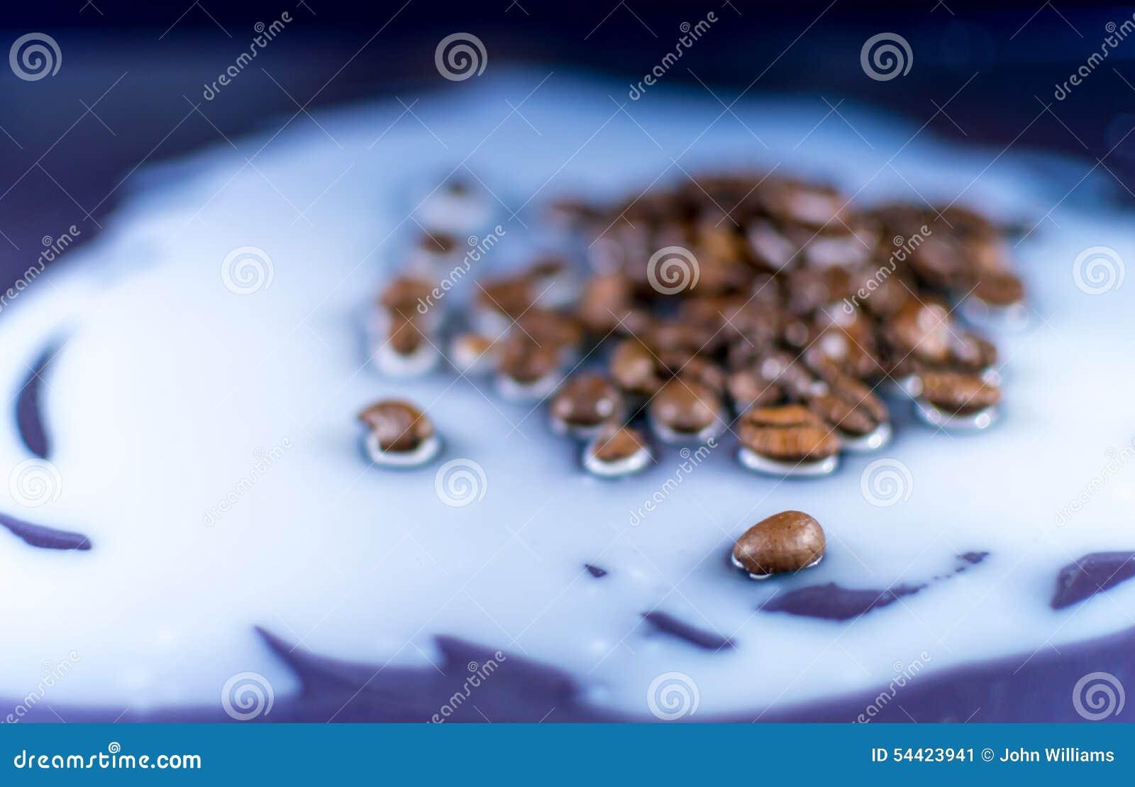 Φασόλια καφέ που ανατρέπονται στο γάλα
